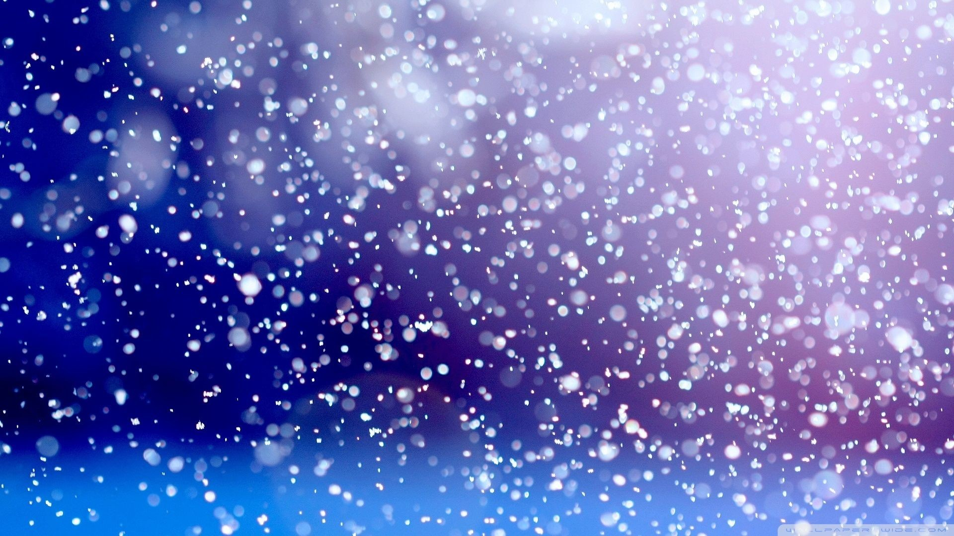 Snow Falling Wallpaper Animated