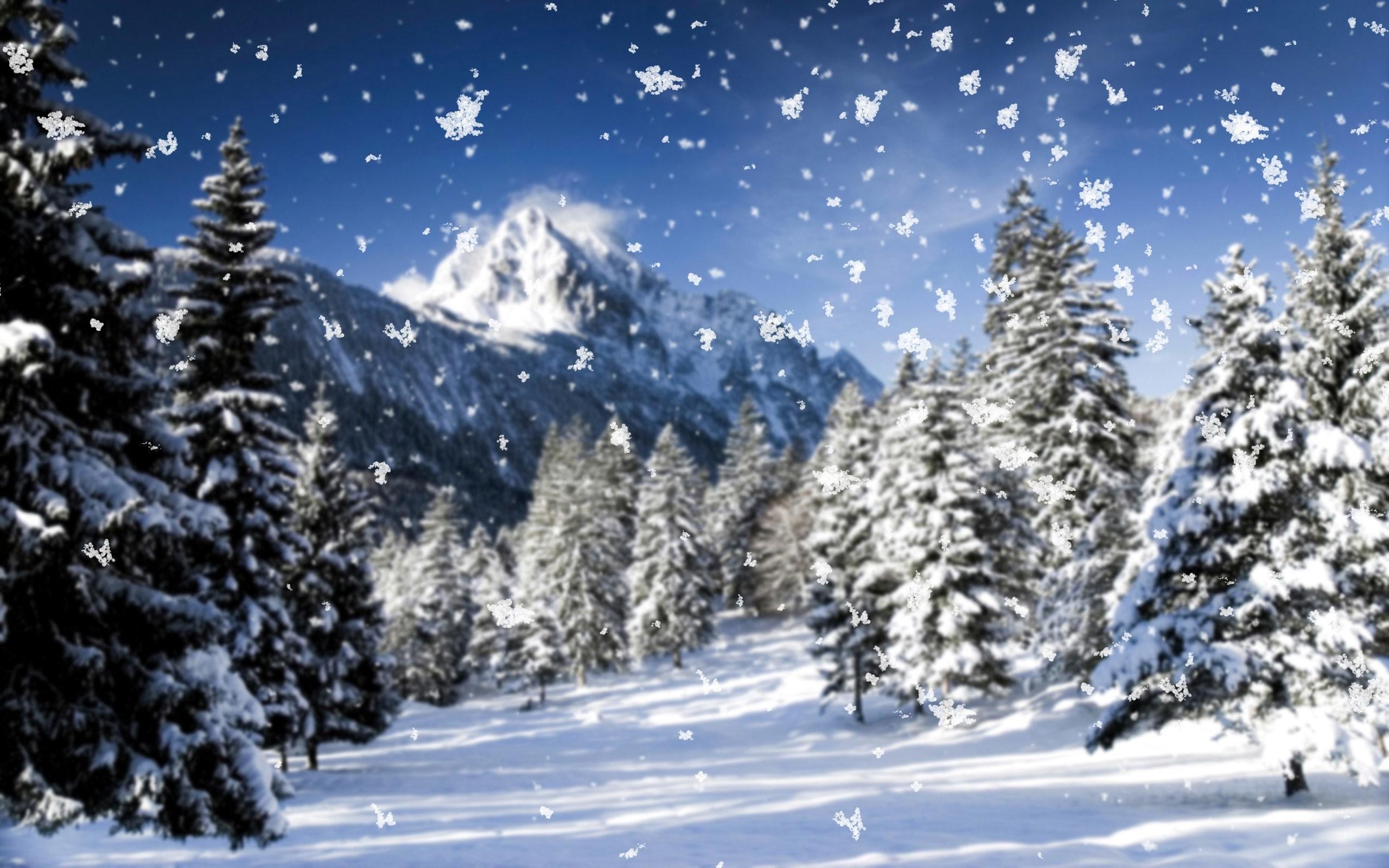 Snow Fall 762178 …