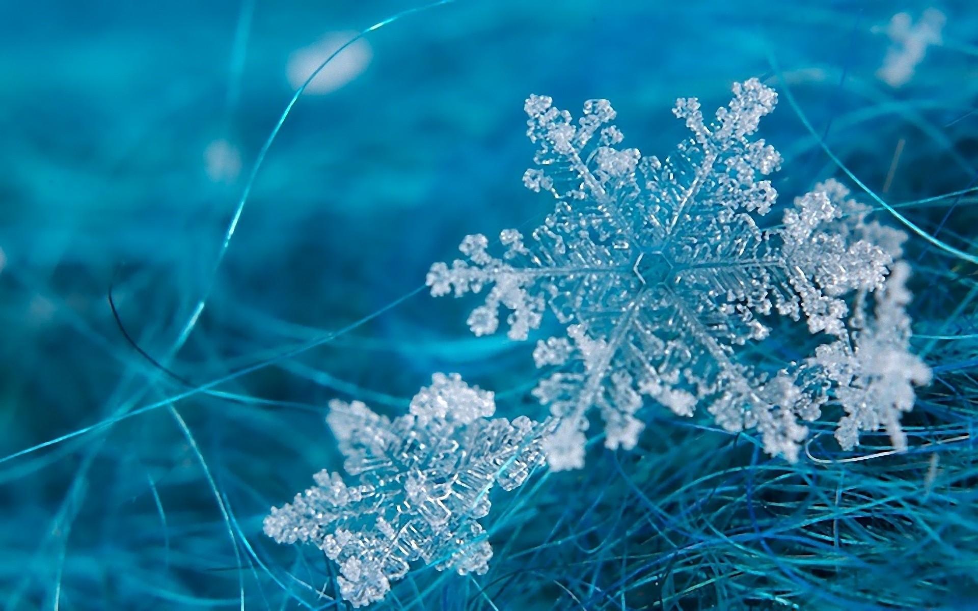 Snowflakes #6966944