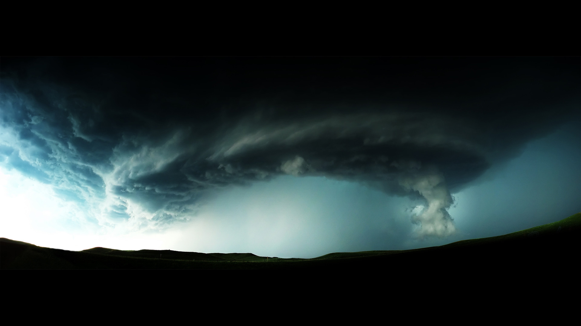 учебник эпический шторм библейских масштабов фото для собак