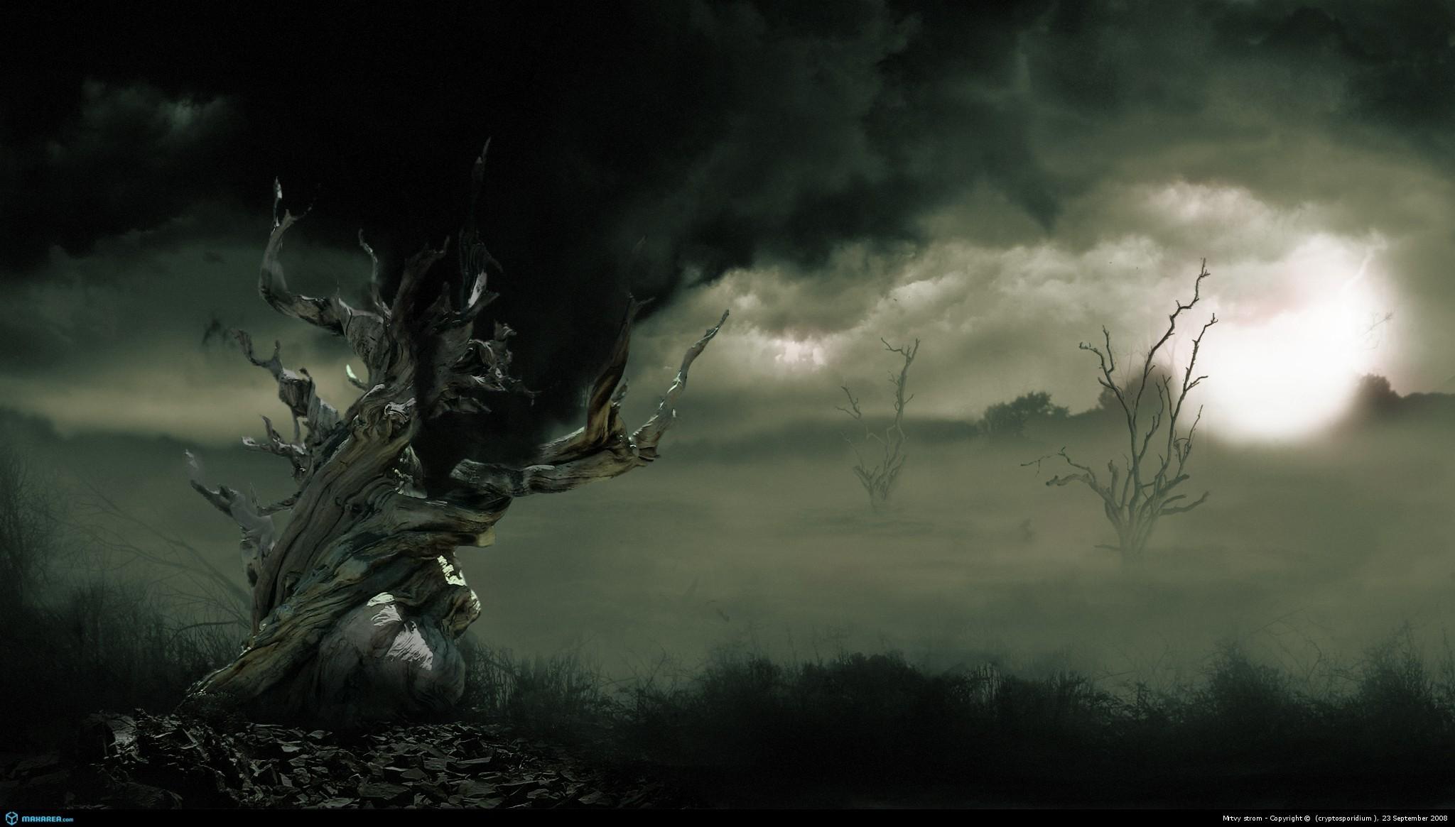 … storm wallpapers on kubipet com; hd …