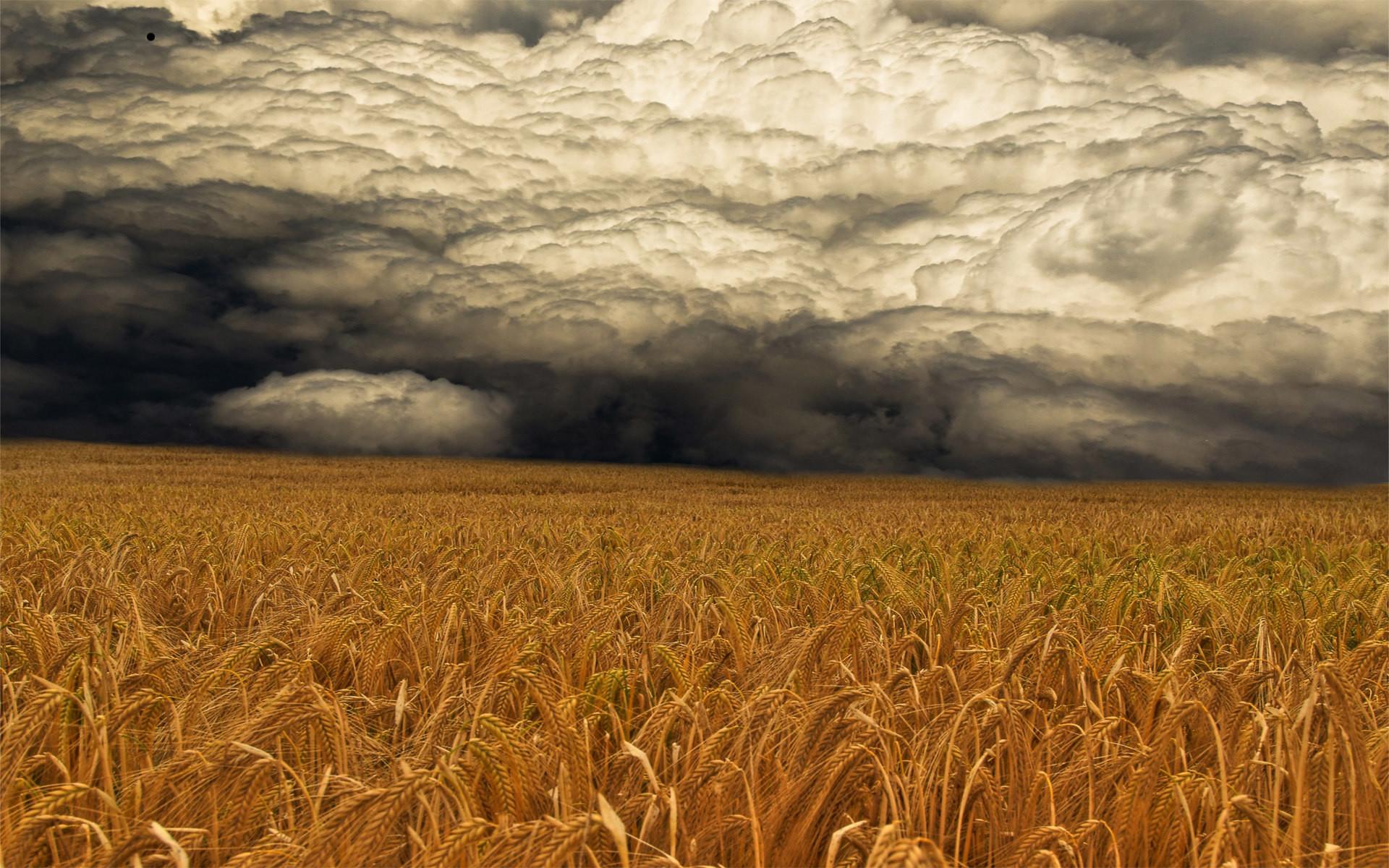 Download: A Storm Coming HD Wallpaper