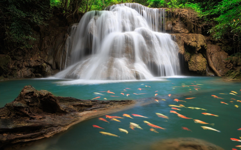 wallpaper in waterfall. Â«Â«
