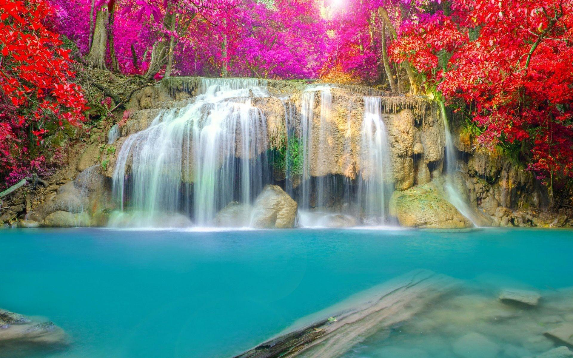 … jungle waterfall wallpaper for desktop laptop mobile …