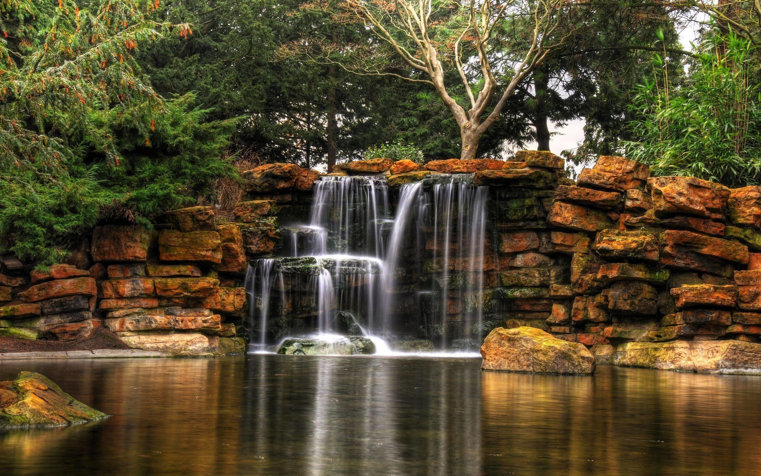 Cascading Falls Plants Waterfalls Nature Cascade Waterfall Live. Waterfalls  Wallpaper