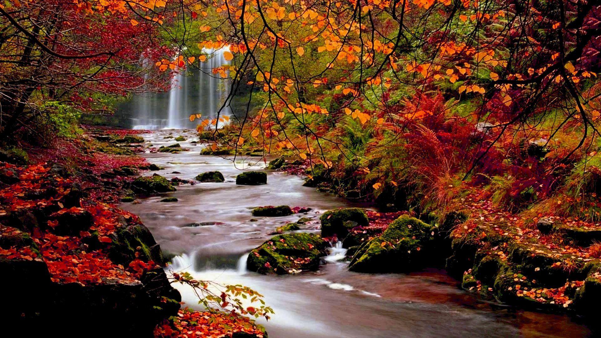 Fall Landscape Wallpaper | HD Autumn Trees Nature Landscape Leaf Leaves Desktop  Background Images .