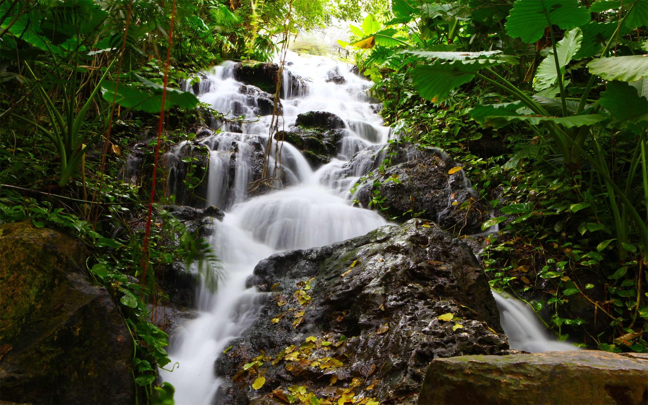 Free Images Of Waterfalls