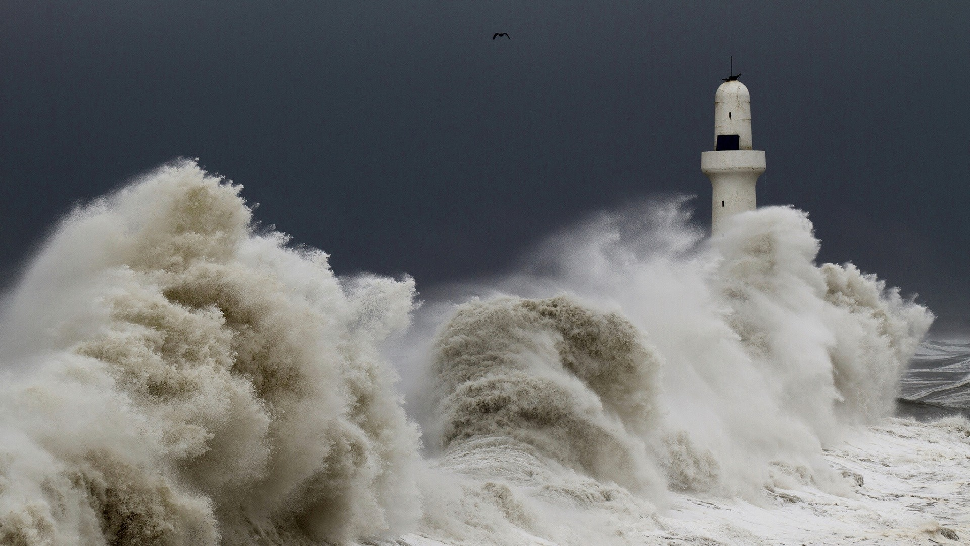 Preview wallpaper storm, tempest, lighthouse, sky, birds, waves 1920×1080