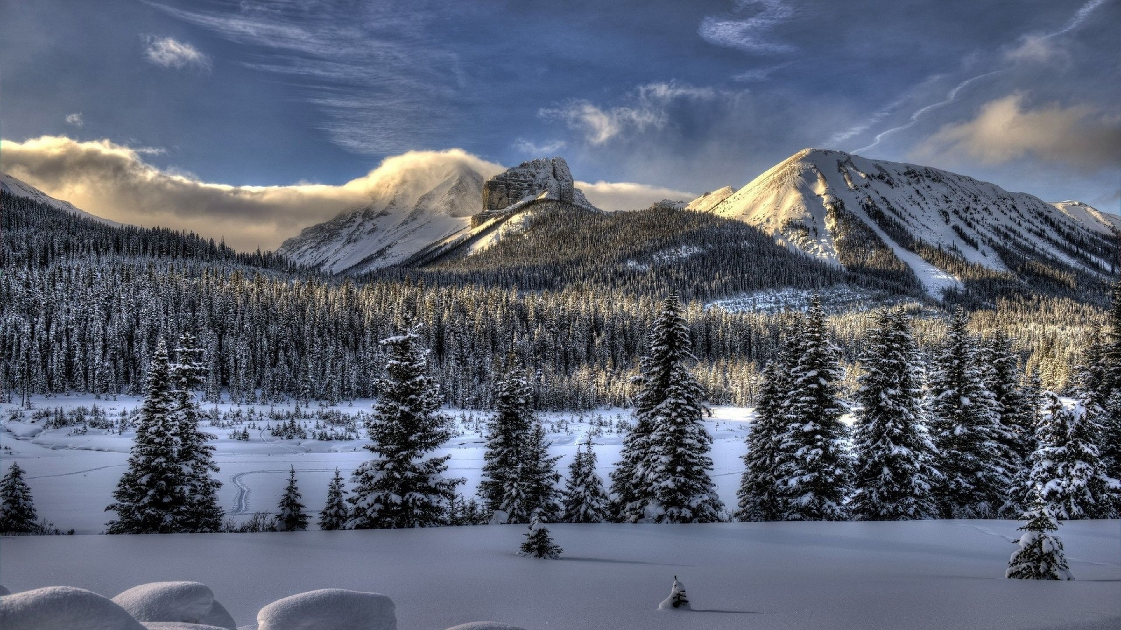 Preview wallpaper snow, winter, trees 3840×2160