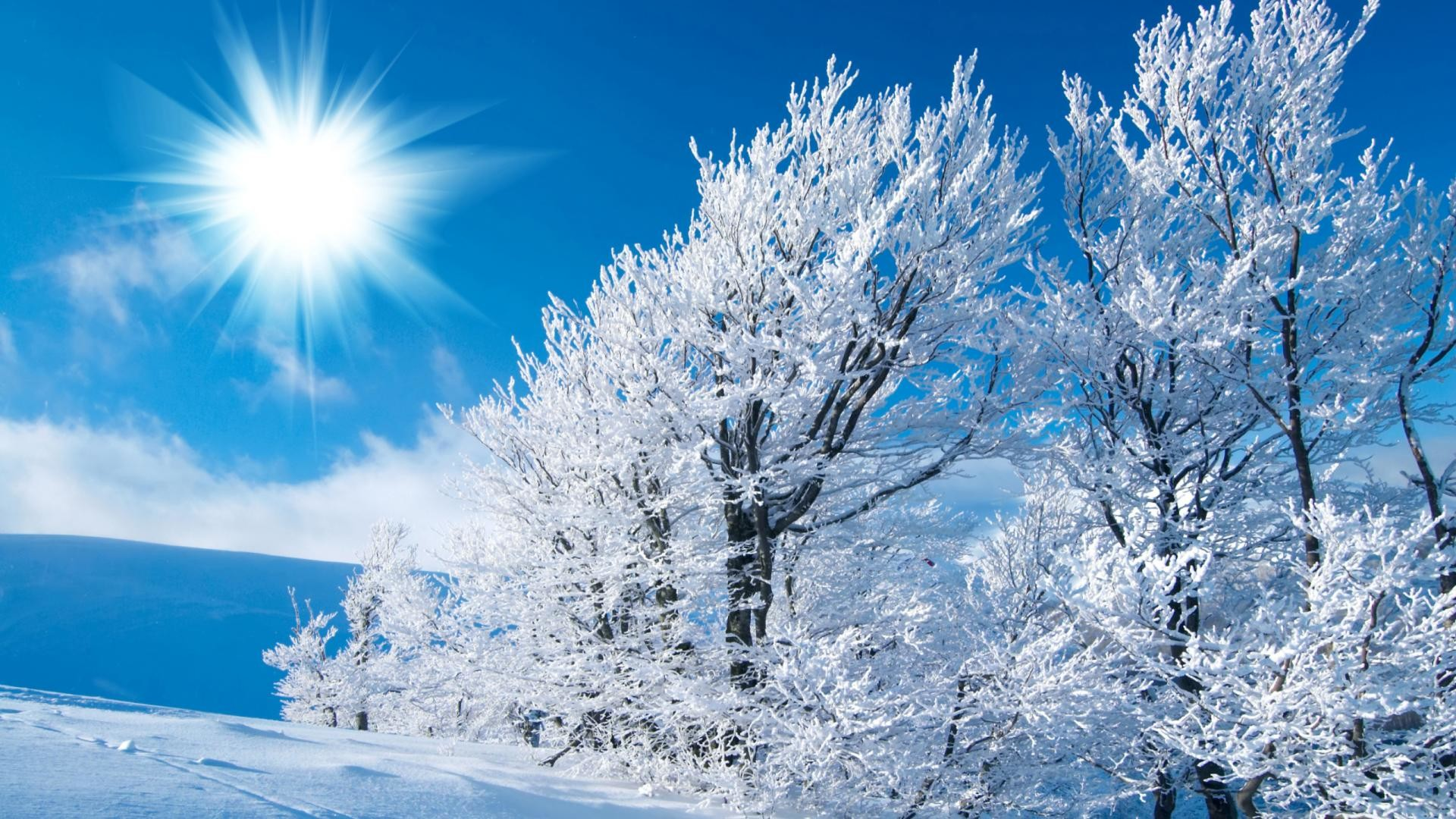Desktop Wallpapers and Backgrounds   Winter, backgrounds, desktop, wallpaper  – 735248