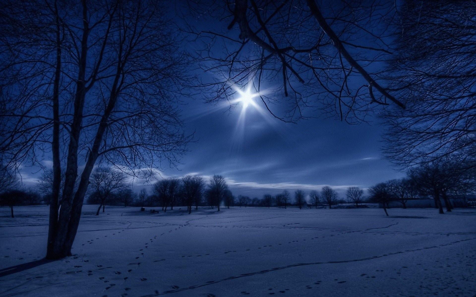 Winter Night In Moonlight Wallpaper Widescreen.