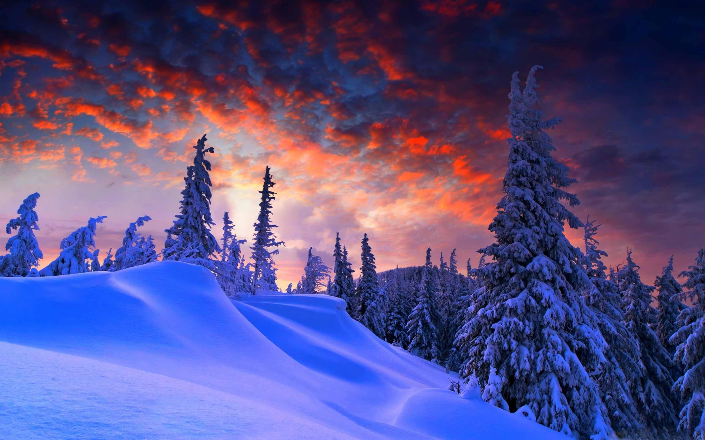 Winter Christmas Mac wallpaper