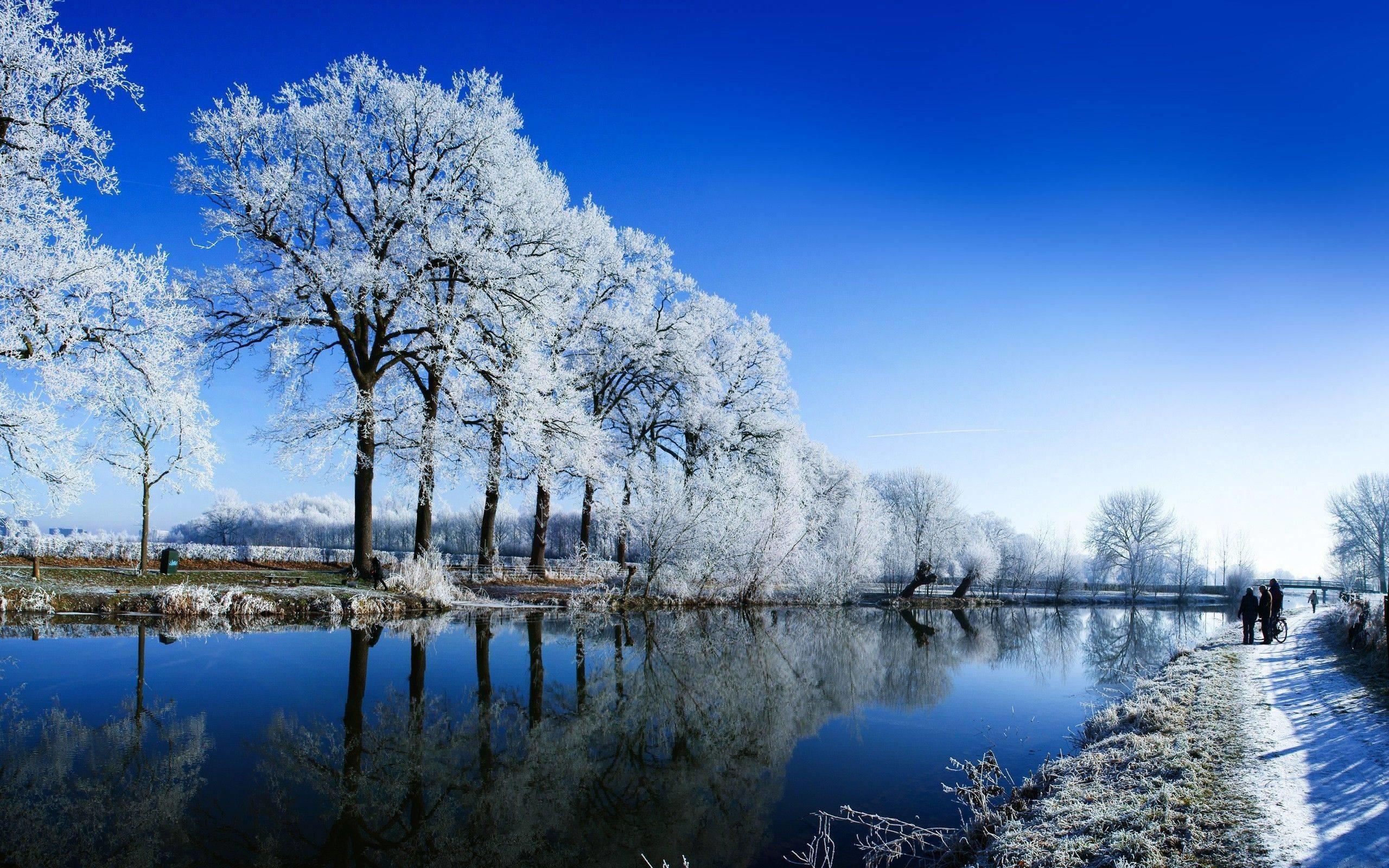 Winter landscape Wallpaper #