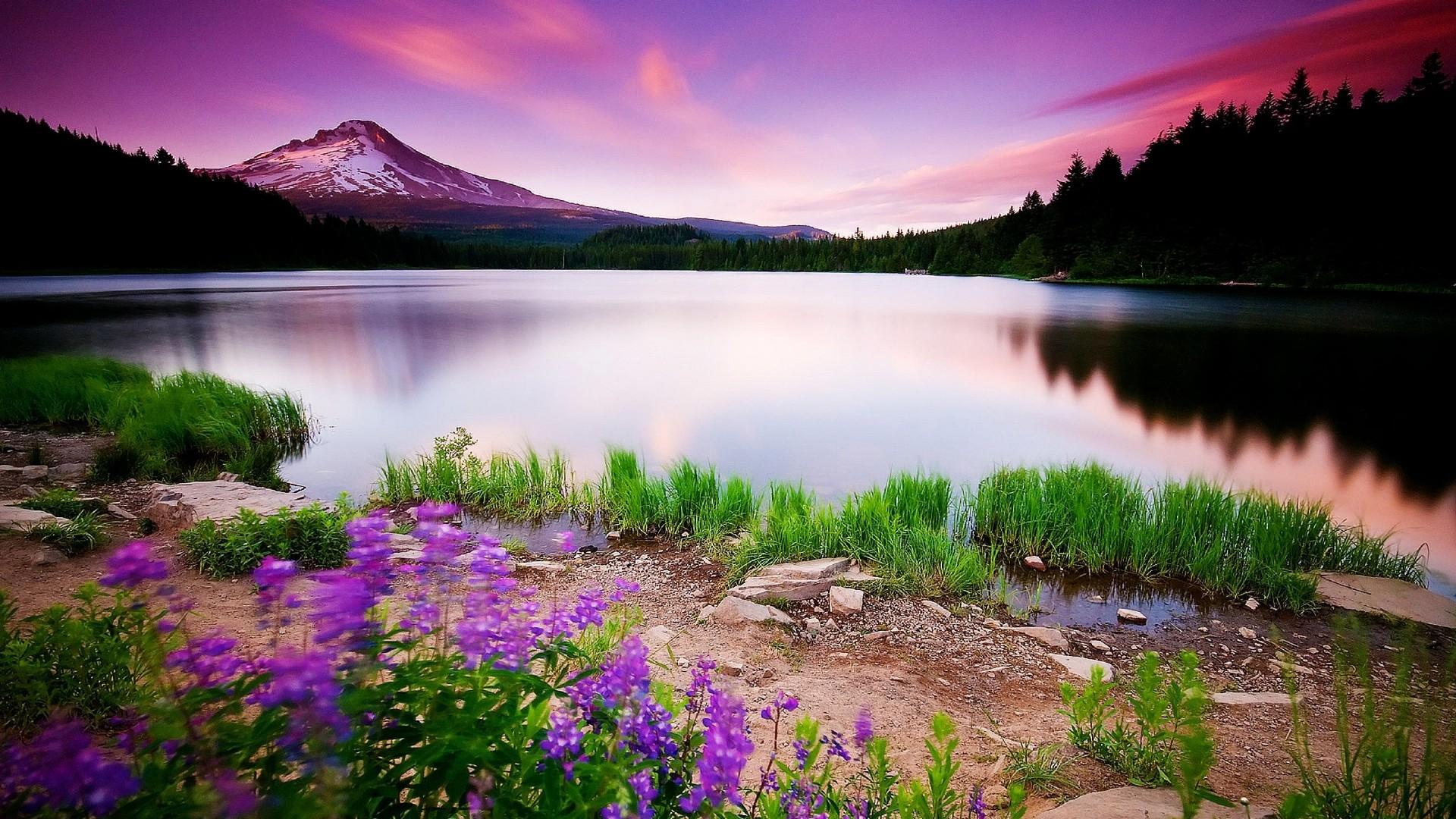 Natural Beautiful Scenes, wallpaper, Natural Beautiful Scenes hd .