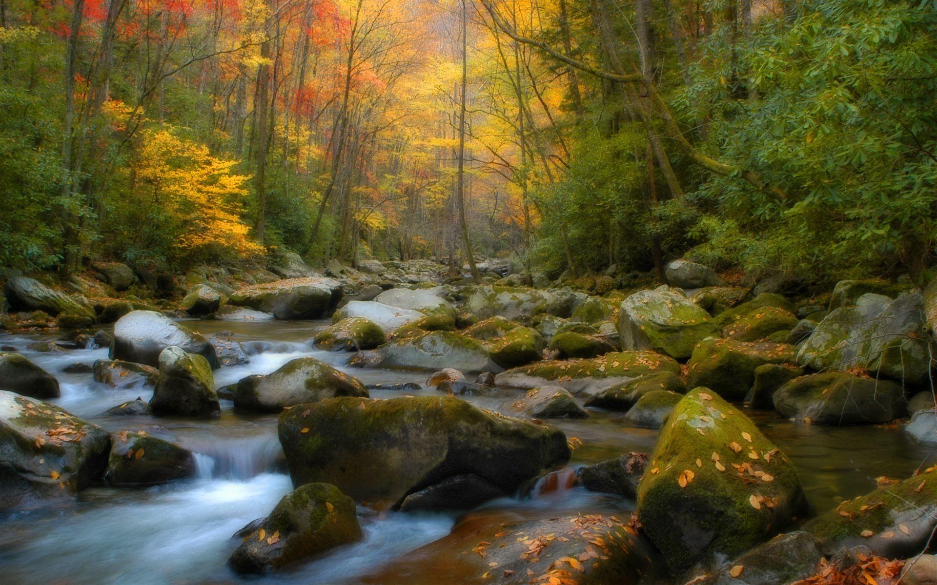 Autumn Country Side desktop wallpaper