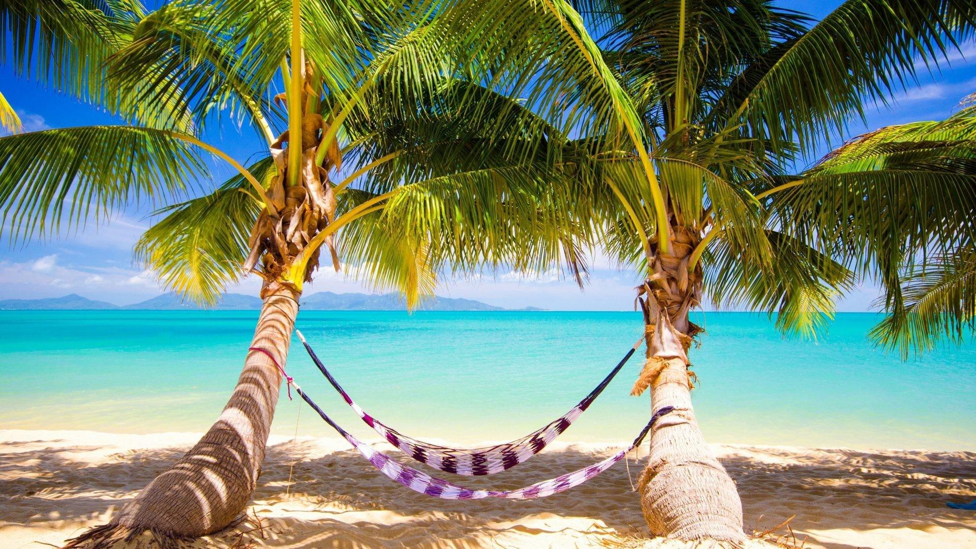 Paradise Tag – Ocean Sunshine Beach Paradise Palms Sea Summer Tropical  Nature Hd Wallpaper Pic for