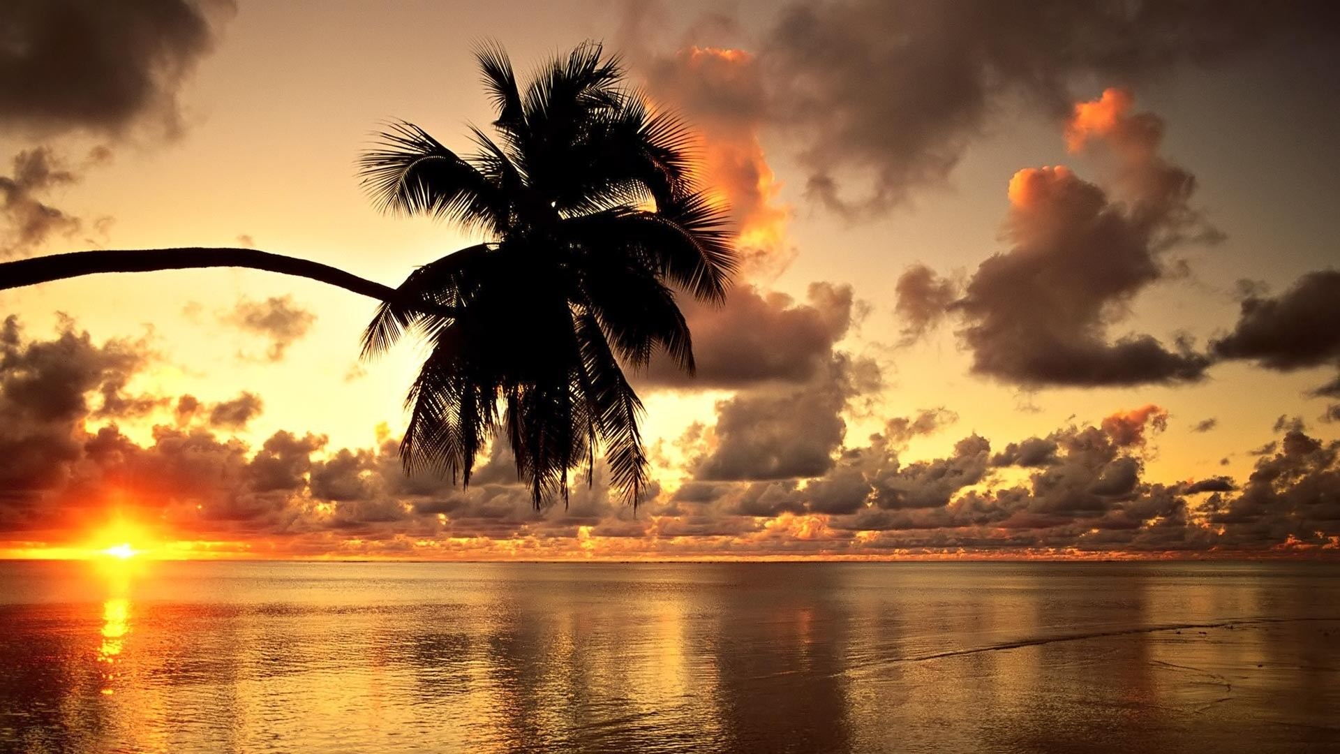 "HD Beach Wallpapers 1080P | Home » Posts tagged ""Hawaiian Sunset HD Beach  Wallpapers 1080p"