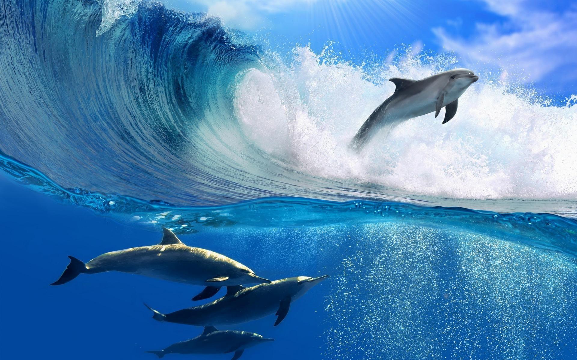Wave-Photos-HD