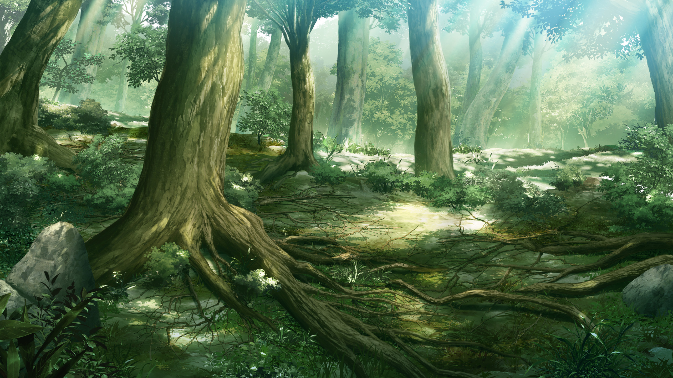 Anime Forest Scenery Wallpaper 7990
