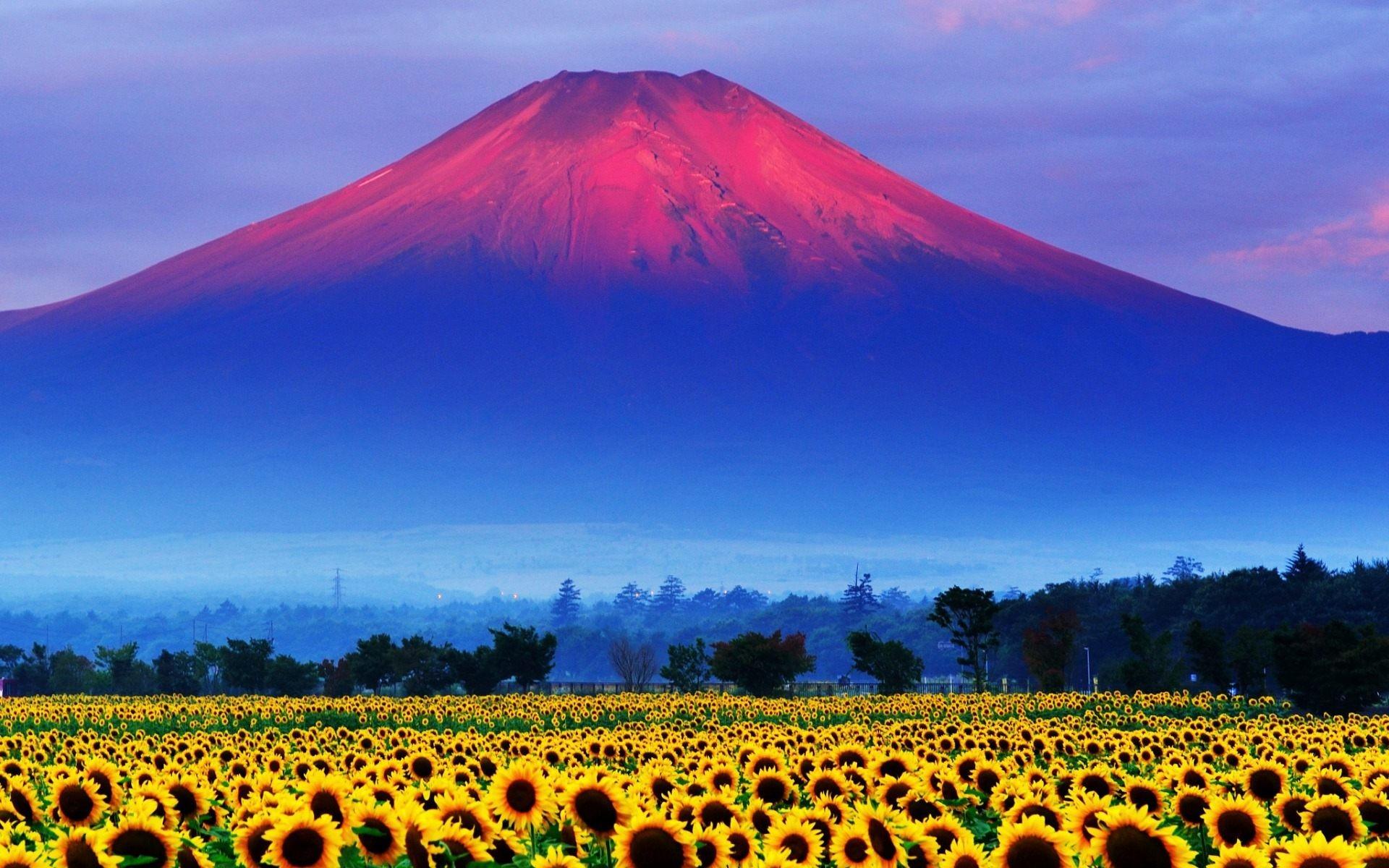 Fuji Mountain Japan Landscape Wallpaper