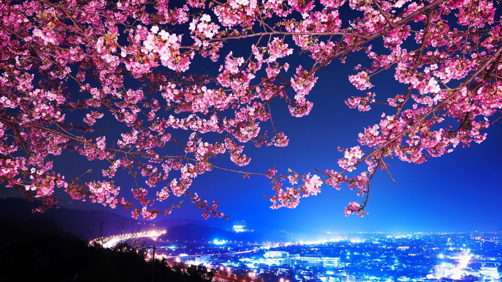 Japan wallpaper 28