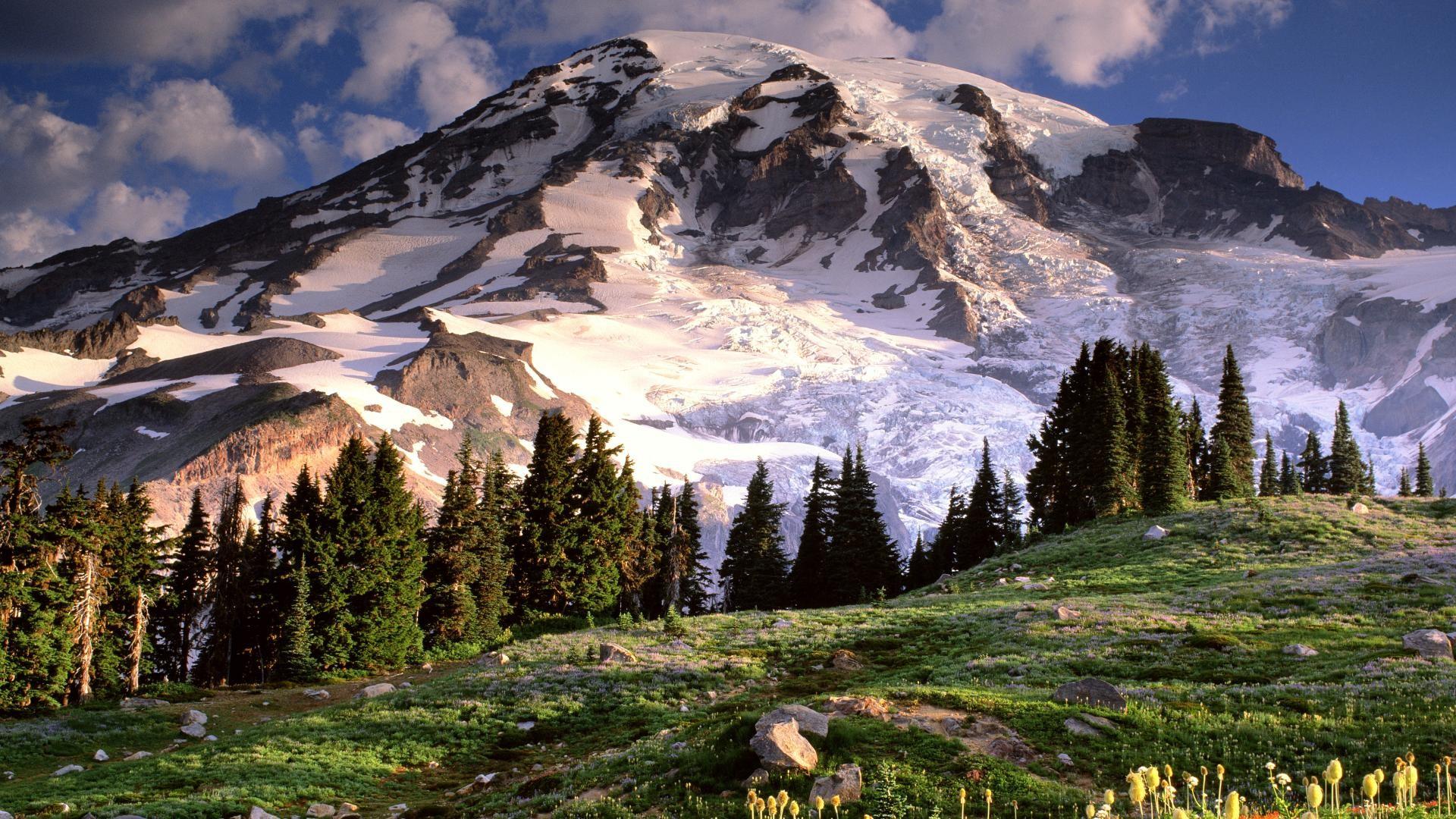 Blooming Wildflowers and Mount Rainier, Washington. Free Desktop Wallpaper  …