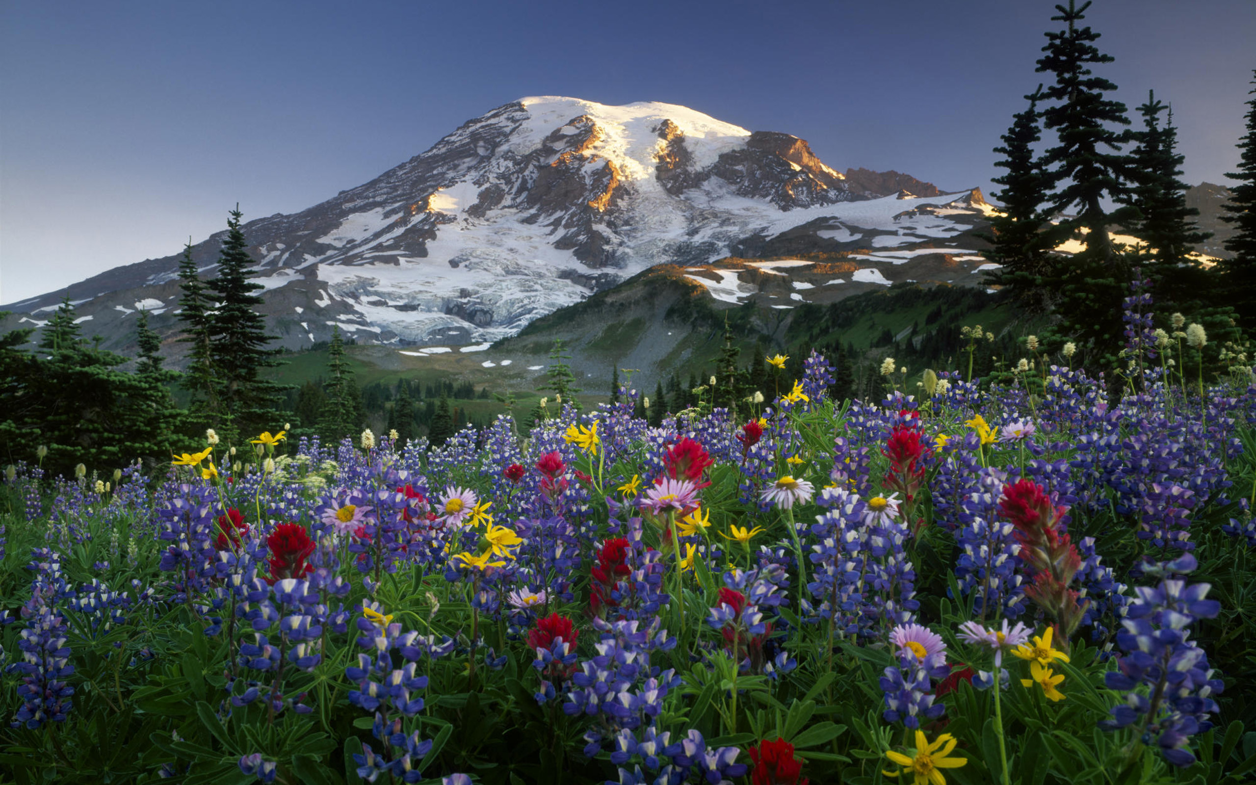Pacific northwest · Mountains Wallpaper Free Download · Mountains Wallpapers  | Best .