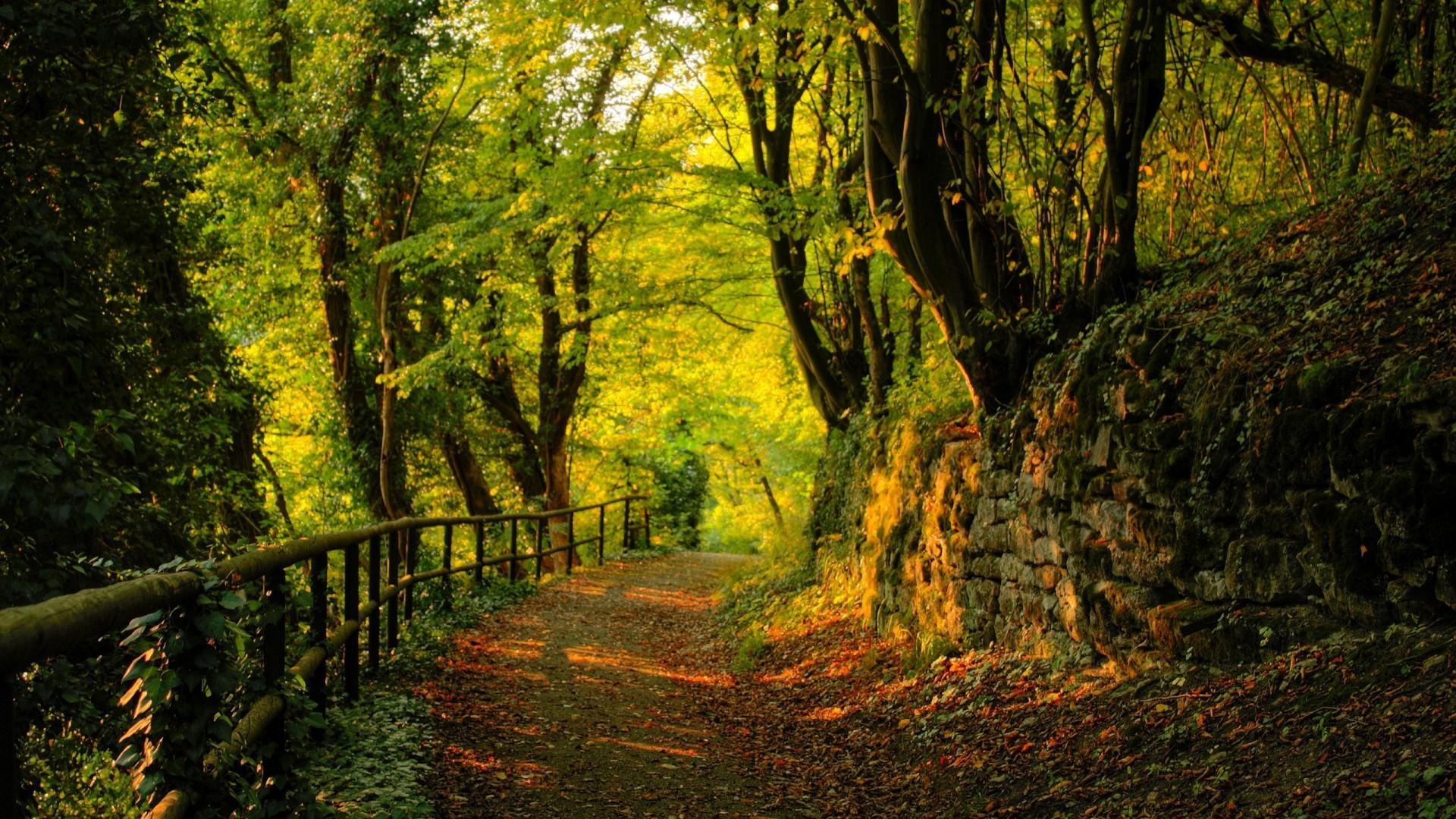 nature wallpaper desktop background green land Zellox 1920×1200 Natural  Wallpapers For Desktop (33