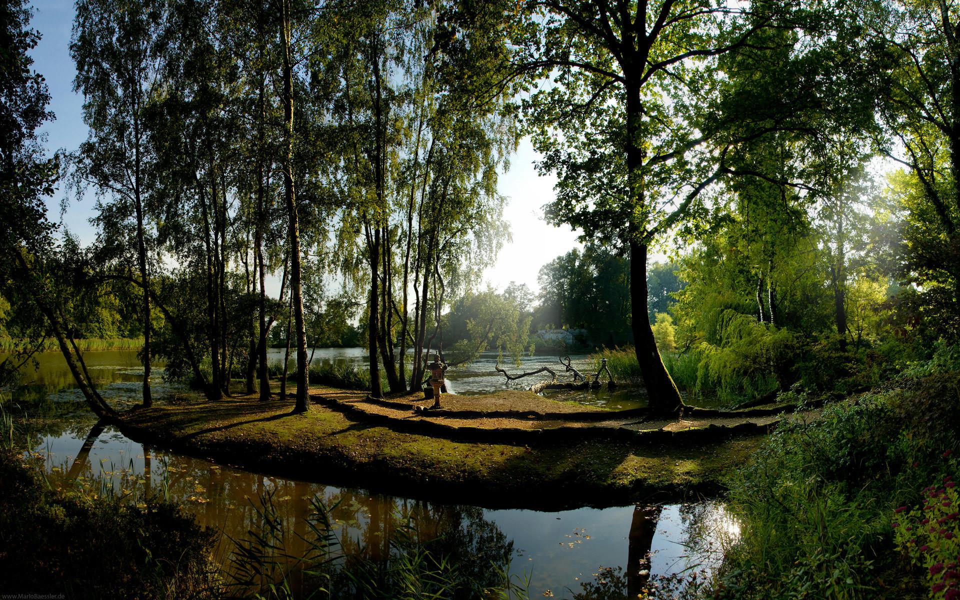 Nexus Desktop Wallpaper Nature Forests – WallpaperSafari