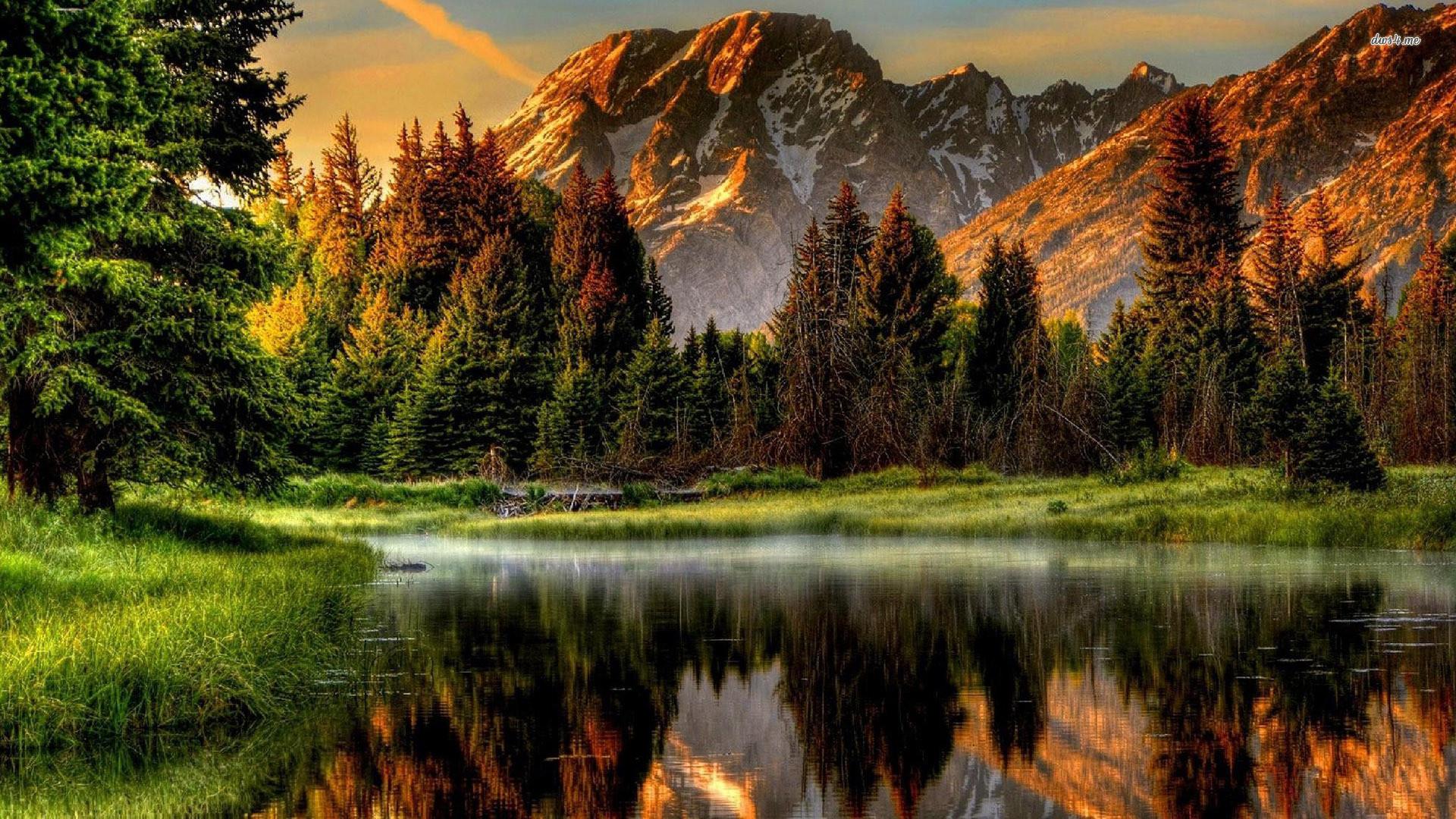 -nature-wallpaper