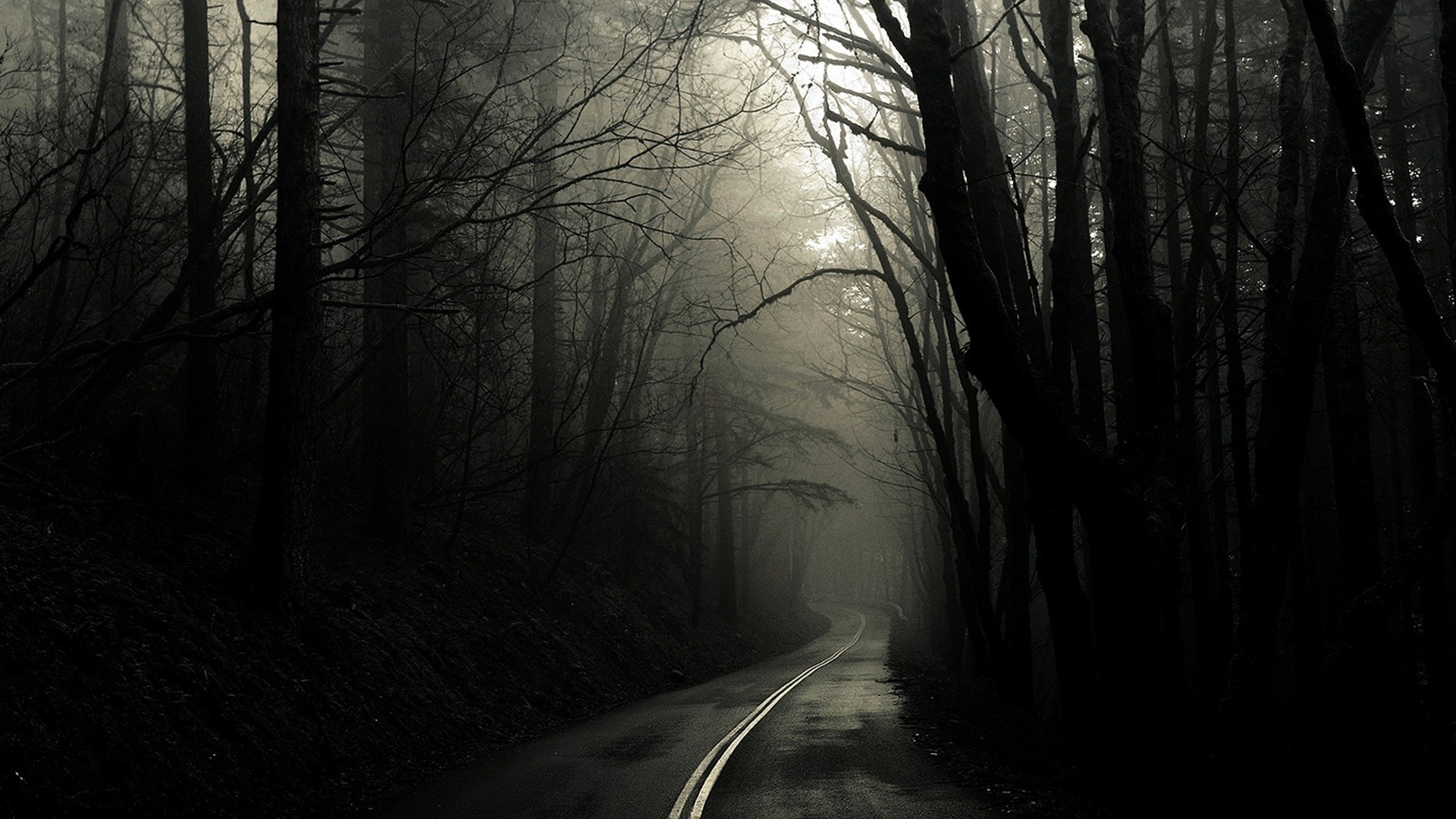Spooky Forest HD Wallpapers | Backgrounds
