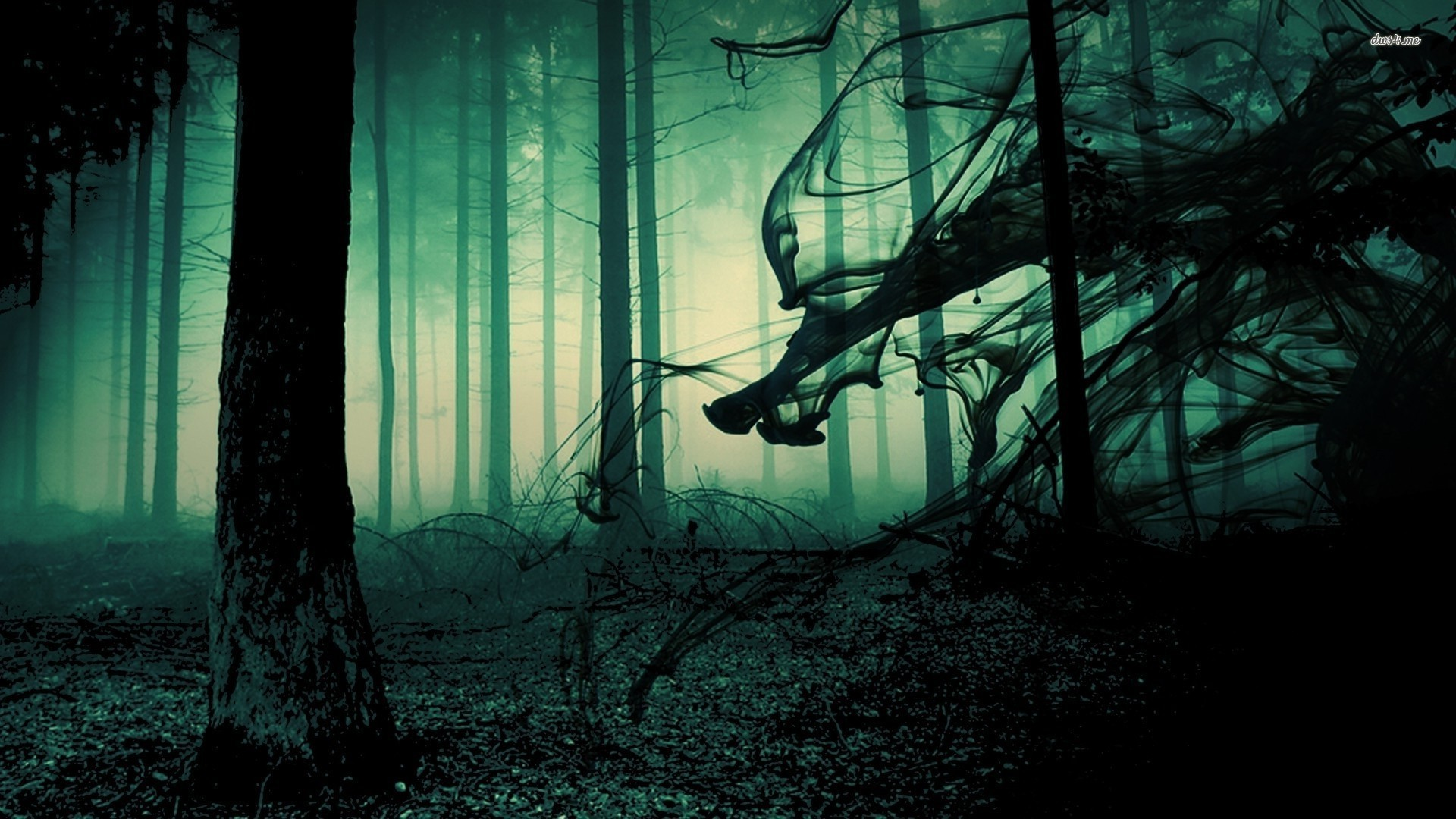 Creepy Forest Related Keywords & Suggestions – Creepy Forest Long .
