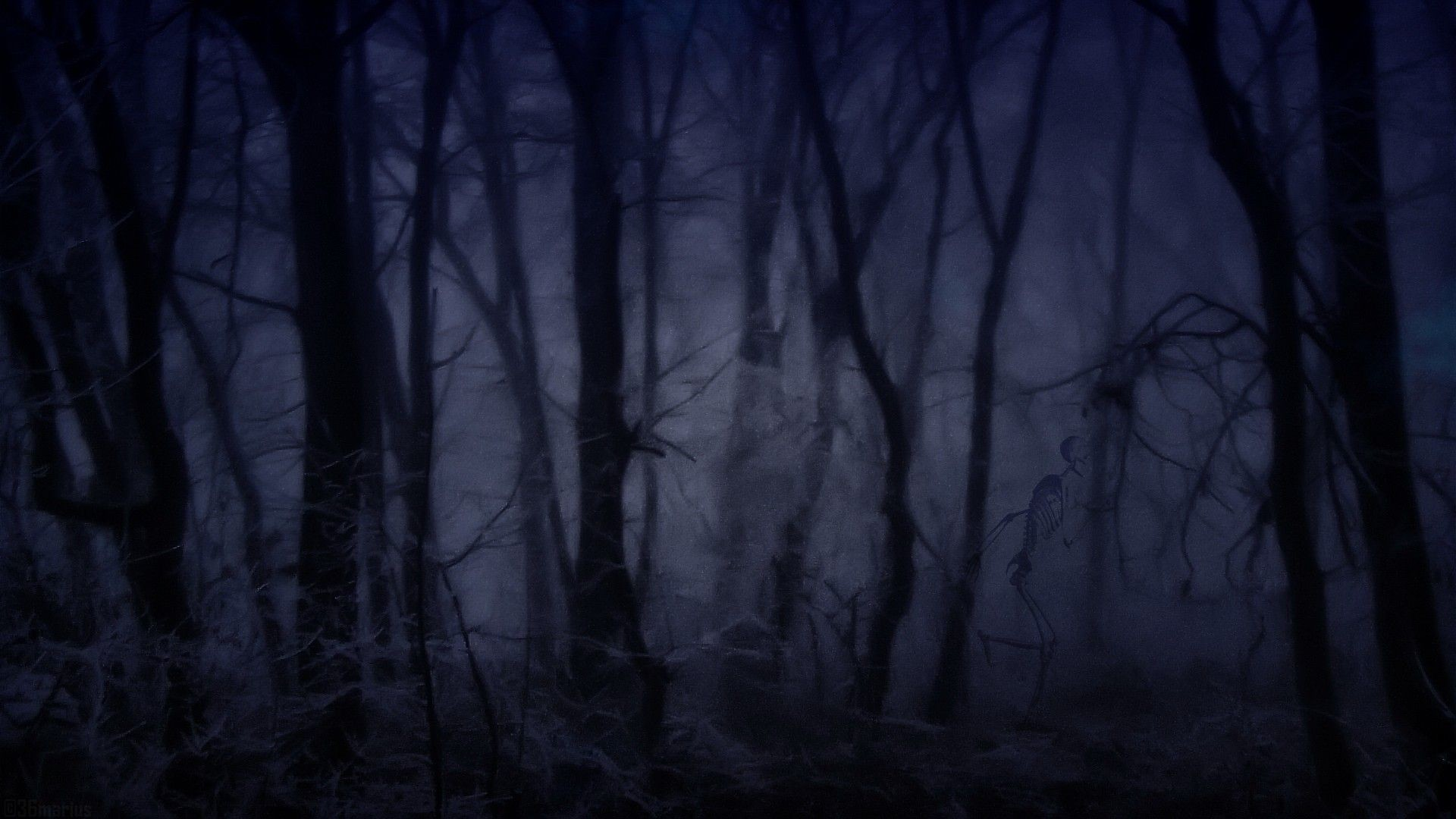 Gallery for – creepy forest backgrounds