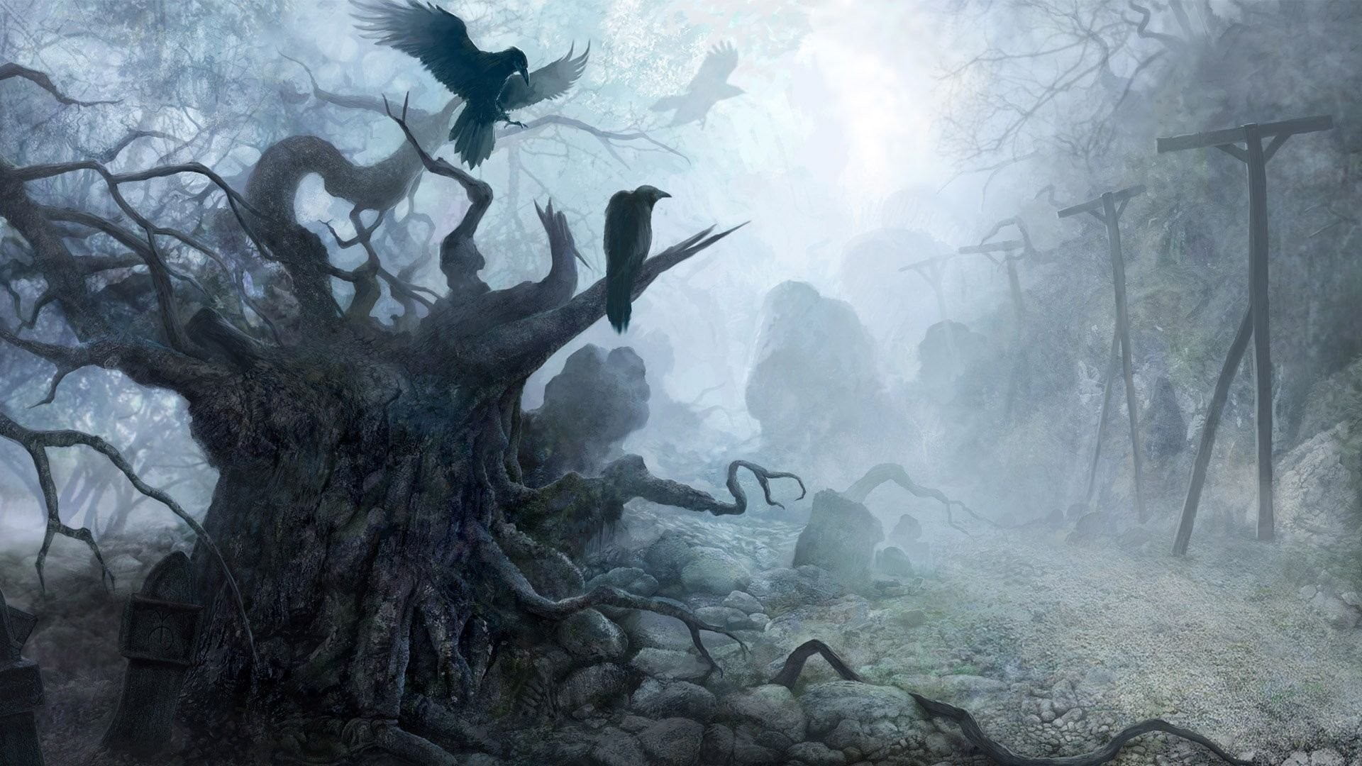 Spooky Forest 626961 …