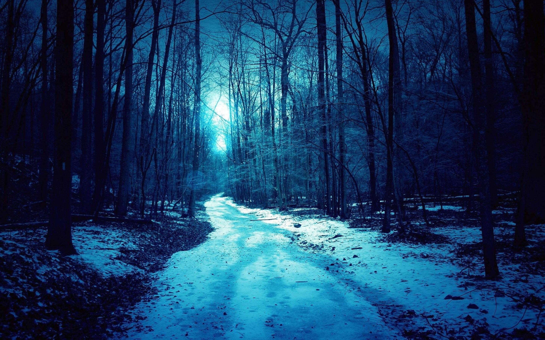 Forest blue winter dark spooky road wallpaper | | 632669 |  WallpaperUP