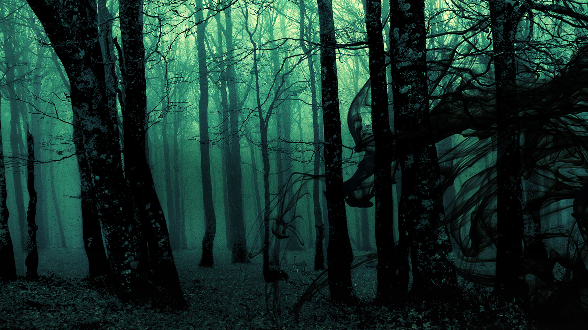 Best Collection of Dark Forest Desktop Backgrounds Wallpapers Pictures.Dark  Forest Backgrounds Pictures images for background images.