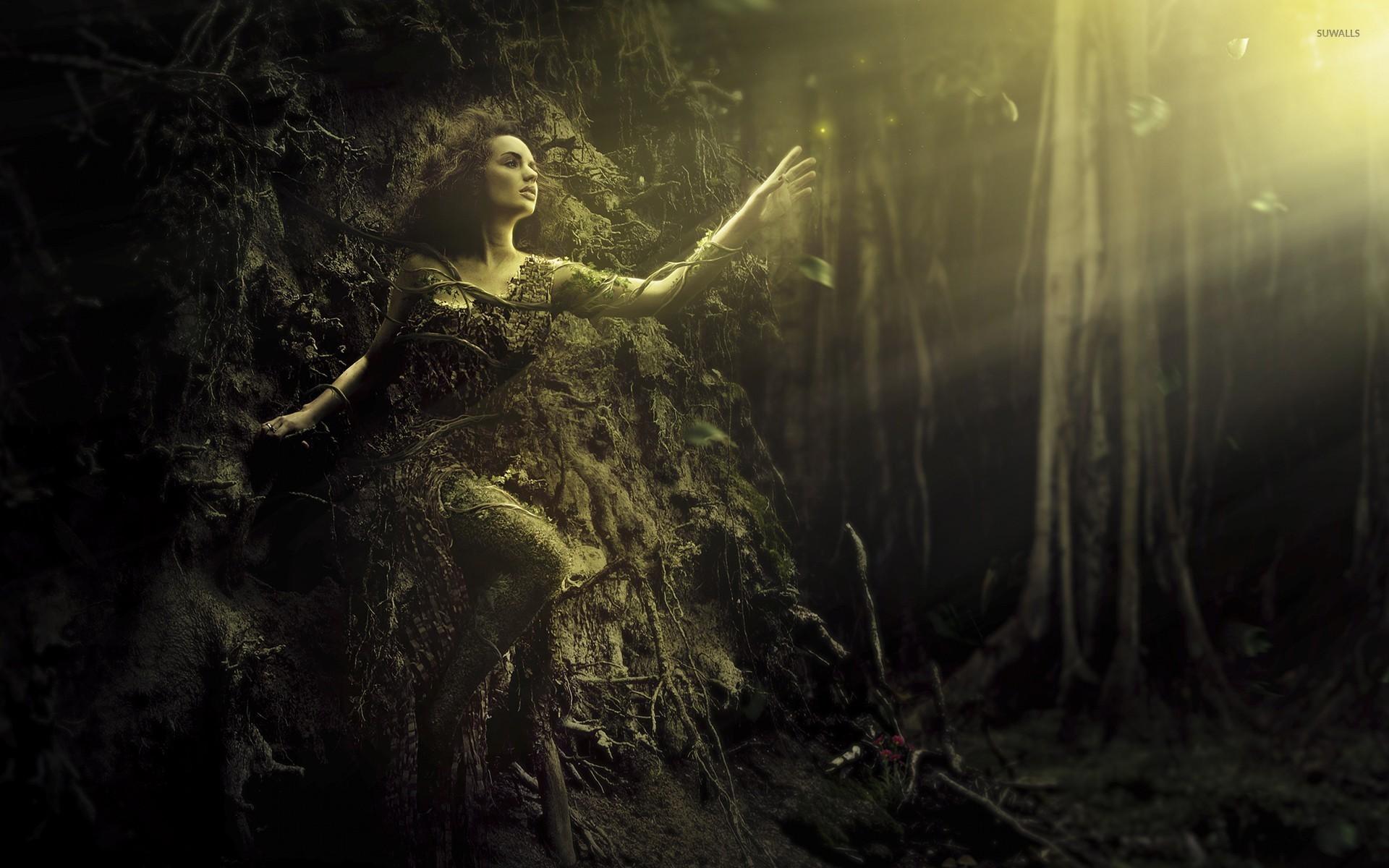 Girl in a tree wallpaper jpg