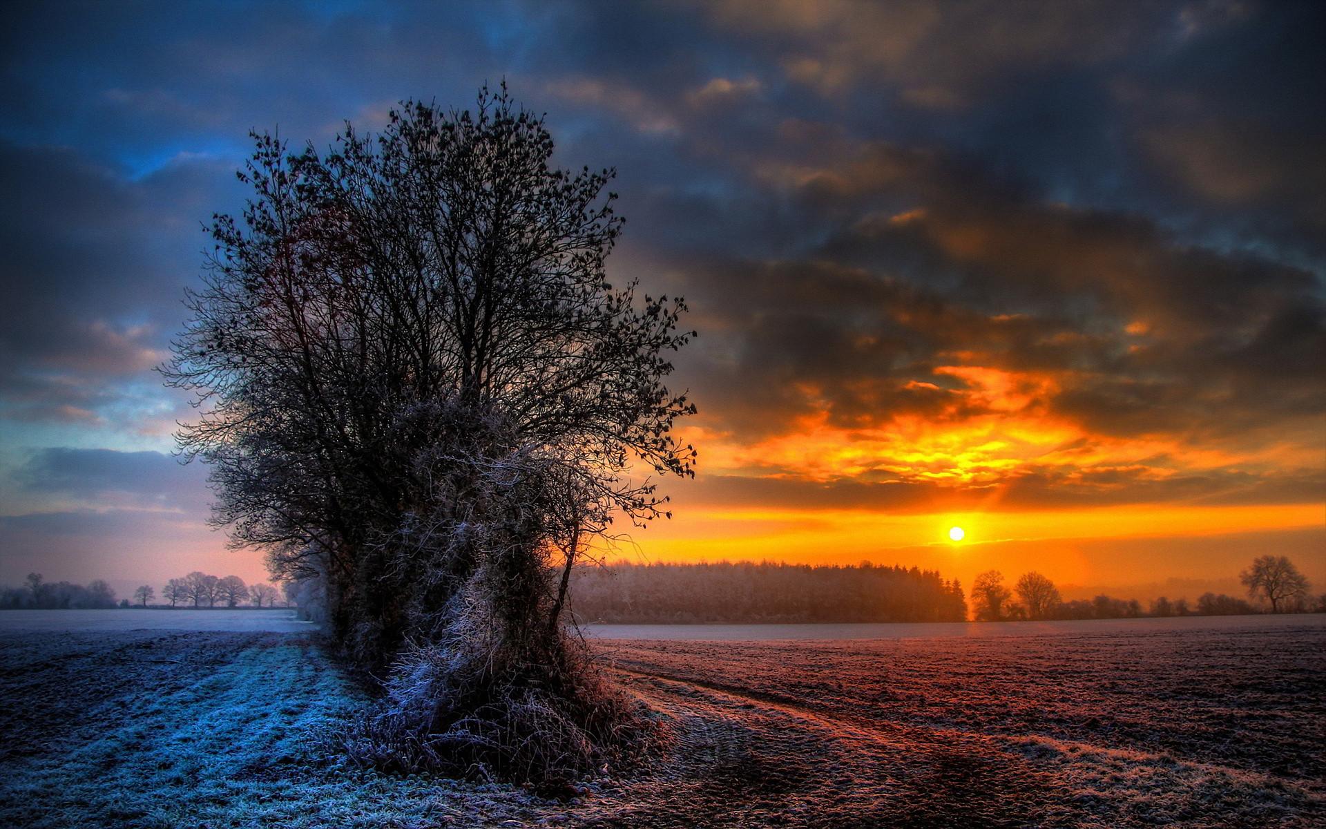 sunset on fields in winter – Desktop Nexus Wallpapers