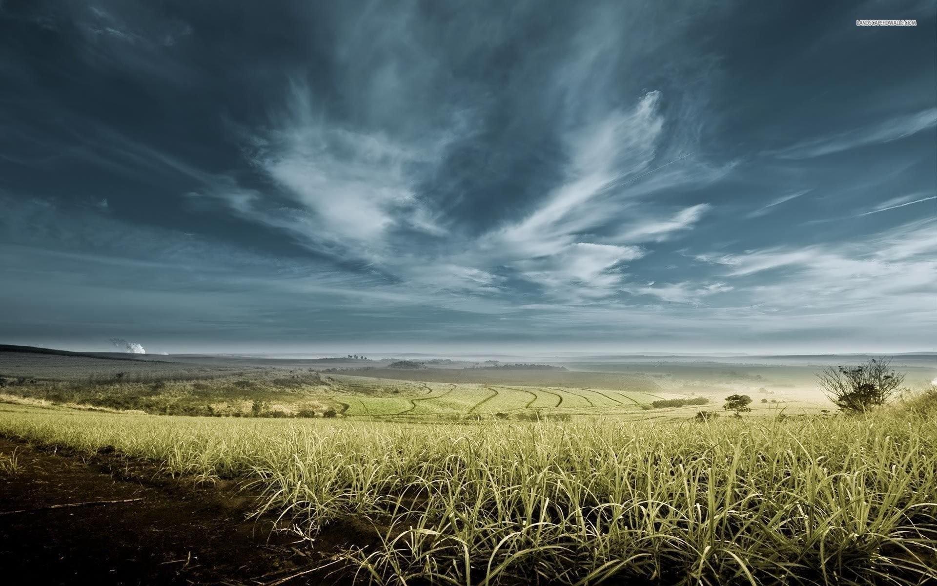 Stormy Sky Above The Fields …