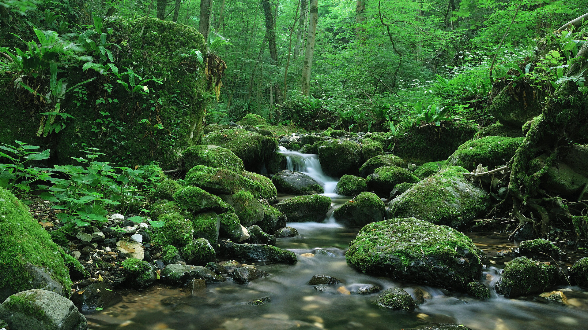 Wallpaper Download Wonderful landscapes – places to dream.  Beautiful Nature Landscapes Desktop Wallpapers.