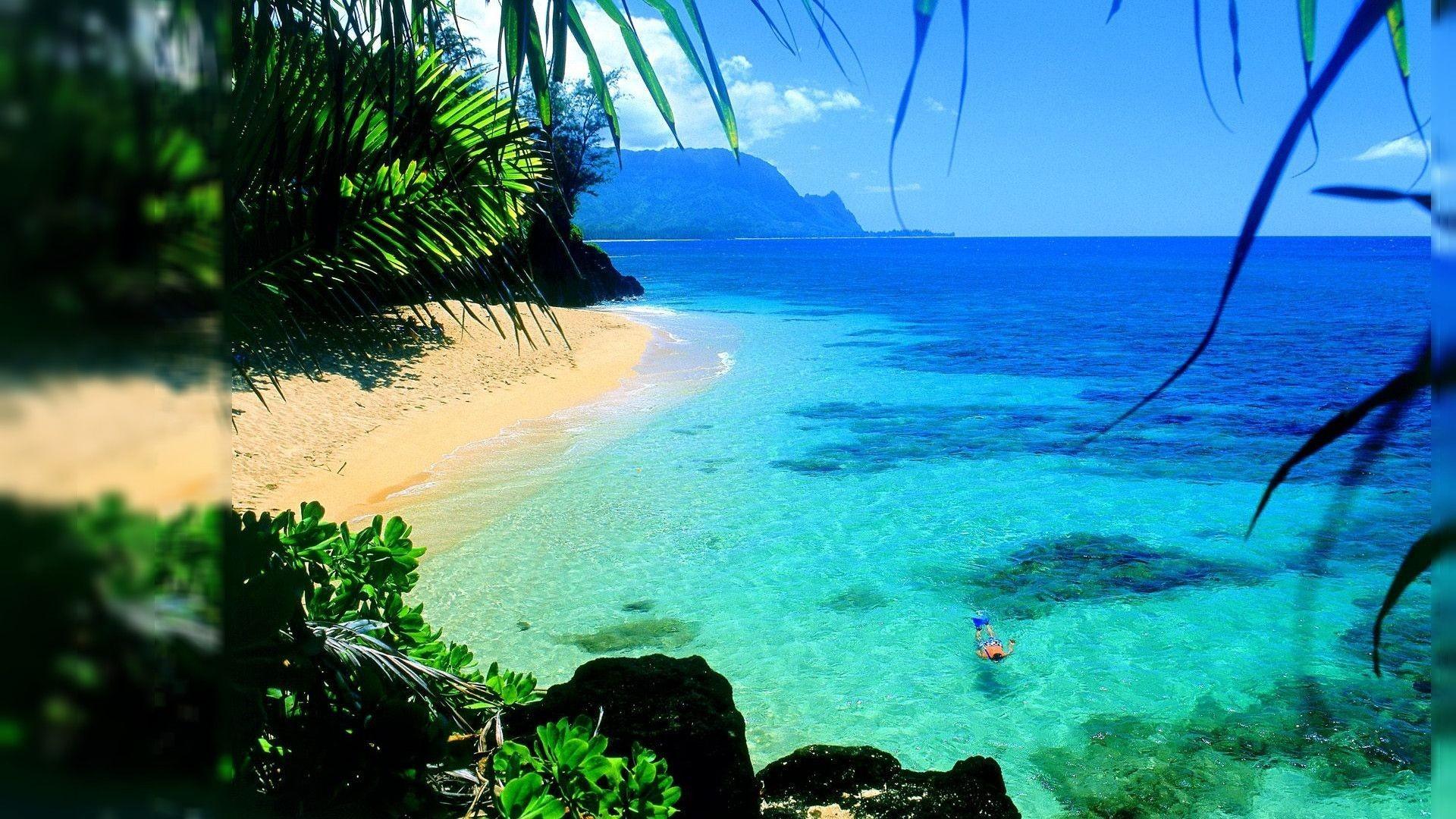 … hawaii wallpapers lyhy com …
