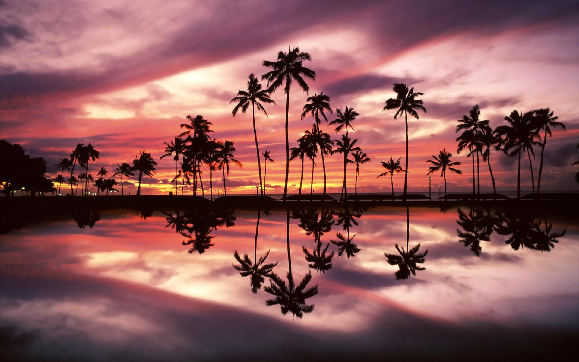 Beach Park, Honolulu, Oahu, Hawaii – wallpaper – Beach Wallpapers .