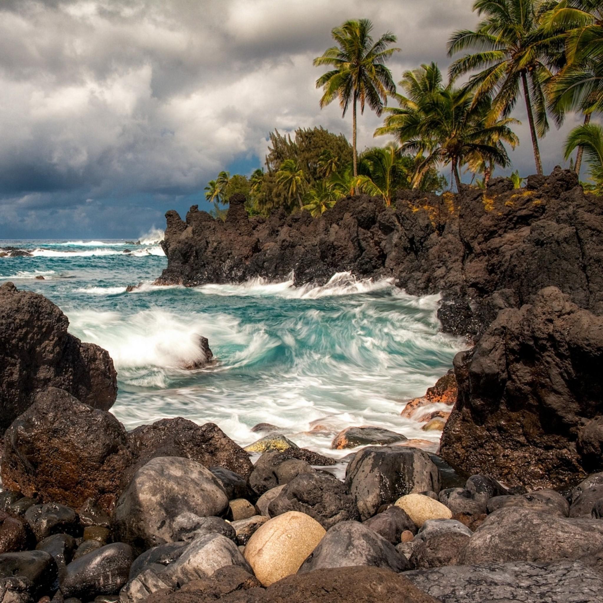 Preview wallpaper maui, hawaii, pacific ocean, cliffs, rocks, surf, palm