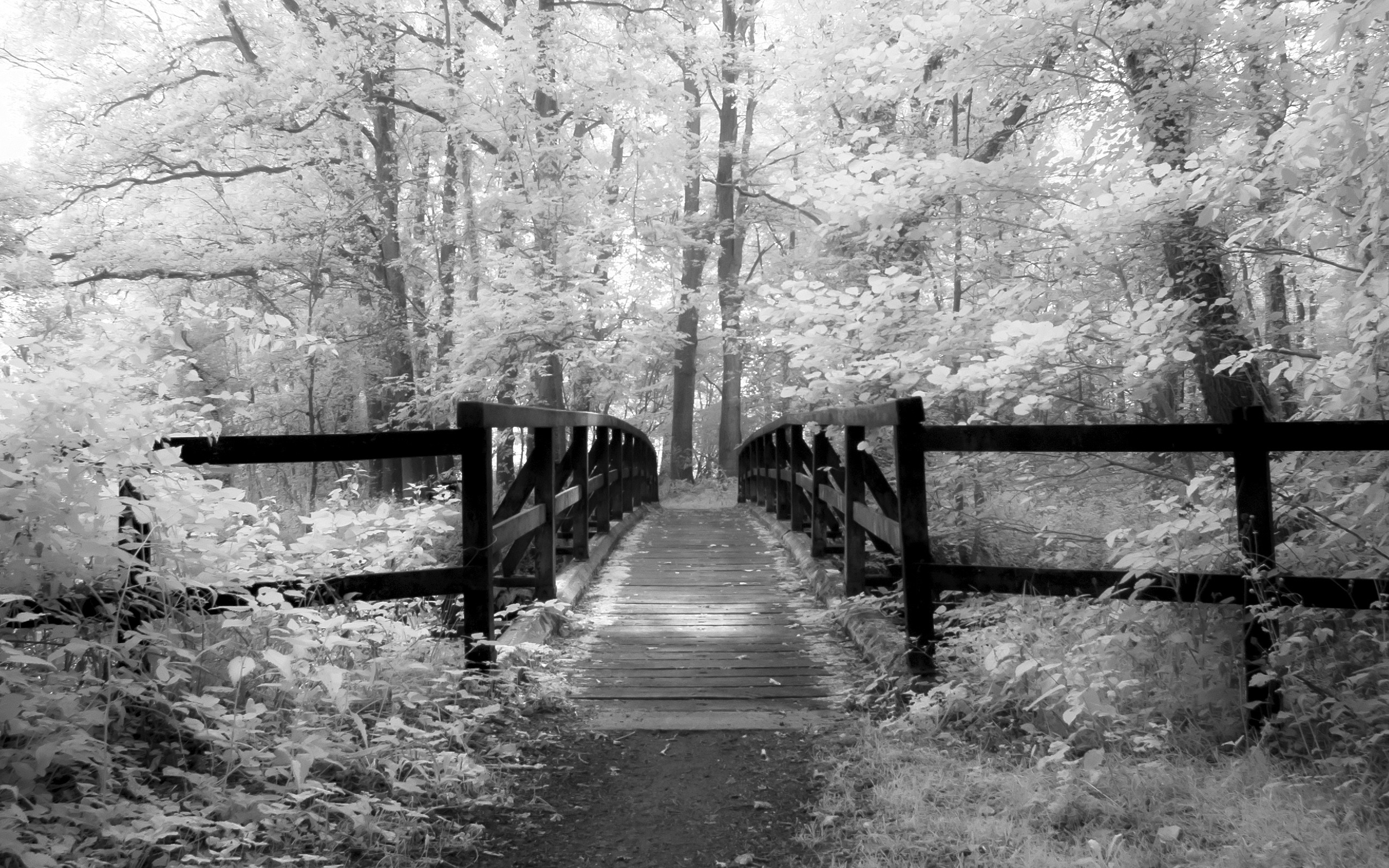 Old Bridge – Infrared Photography