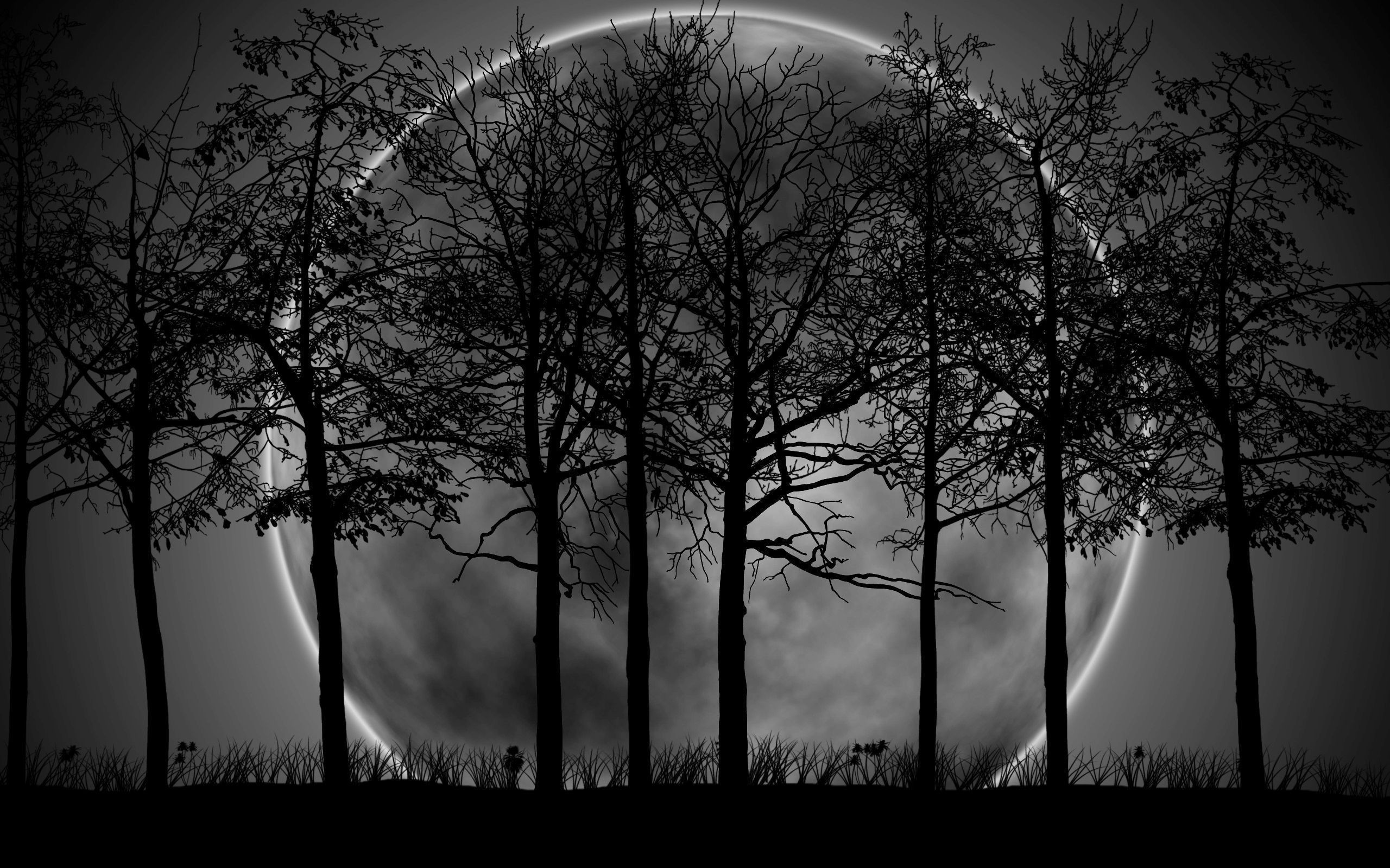 Pictures Of Black Moon