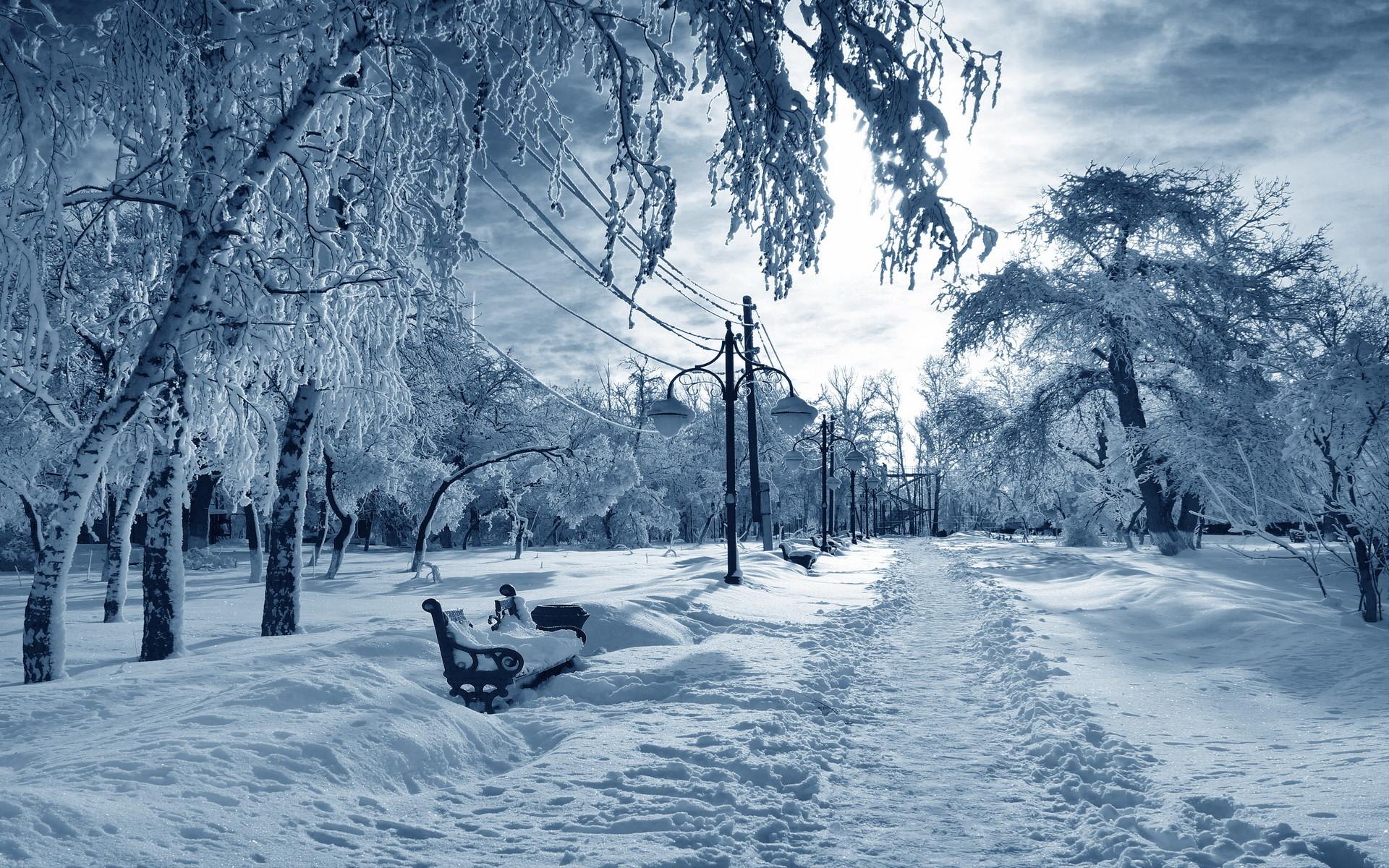 Winter Desktop Backgrounds Wallpaper