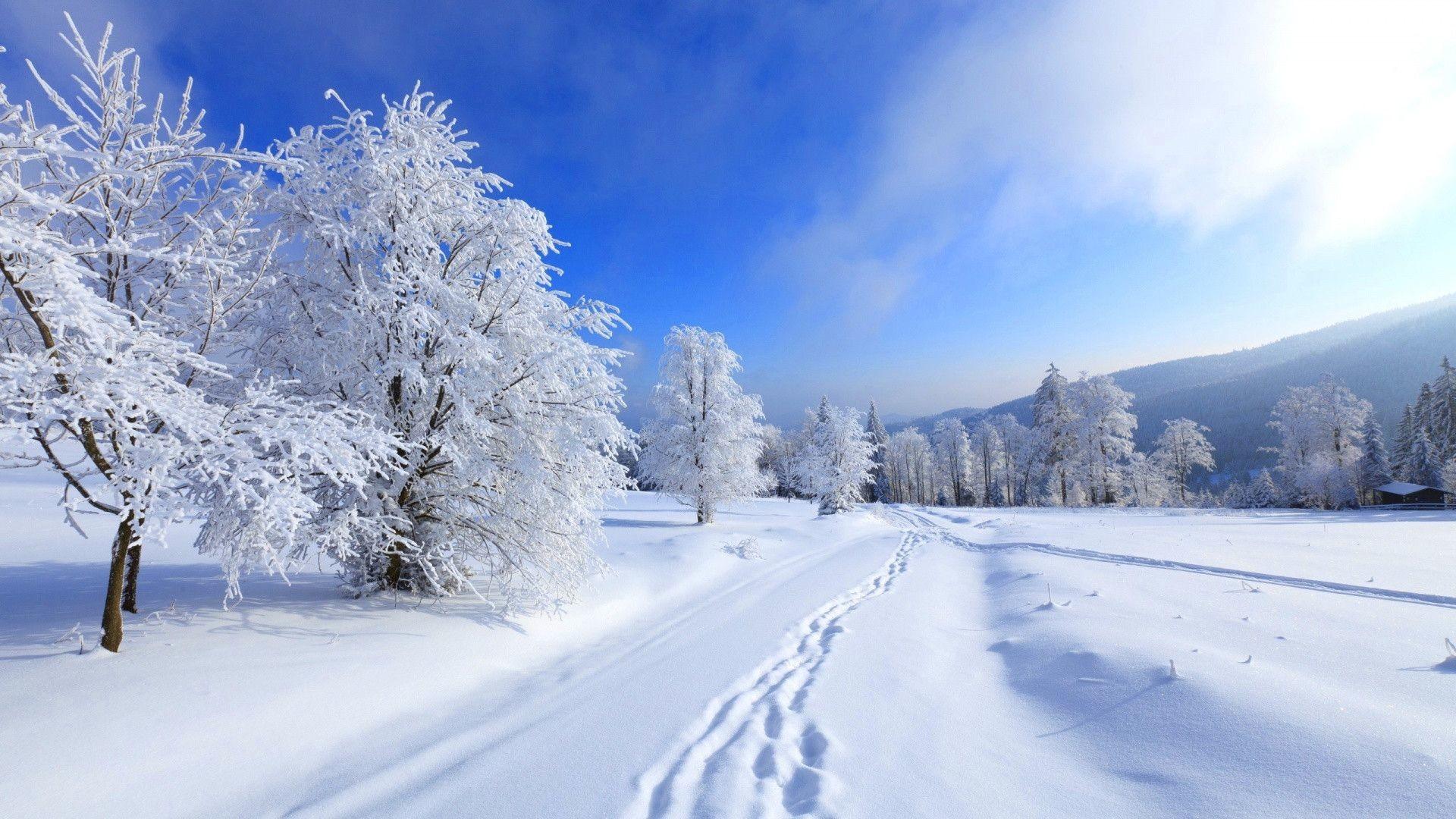 Winter background HD · Winter WallpapersDesktop …