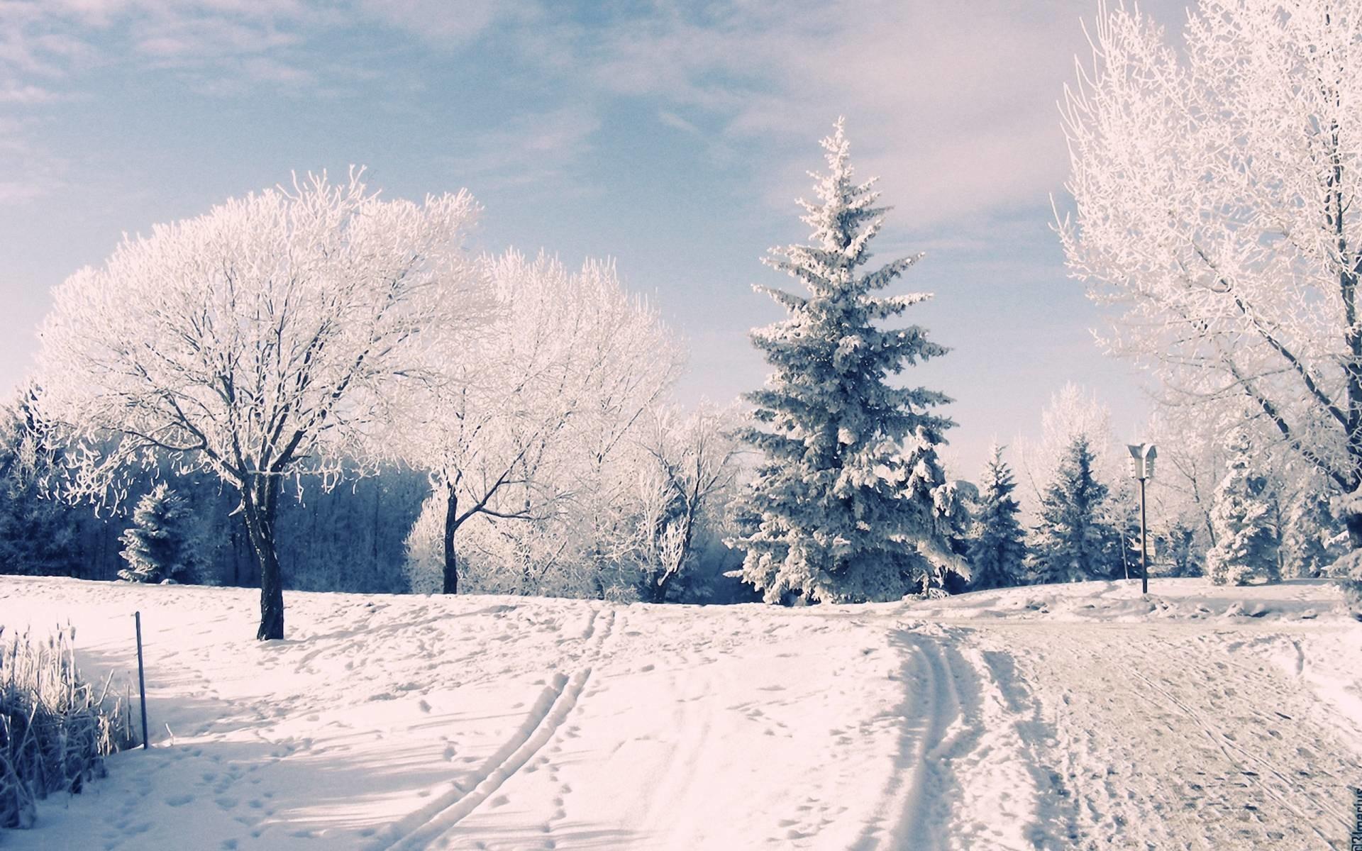 Images For > Winter Wonderland Desktop Wallpaper