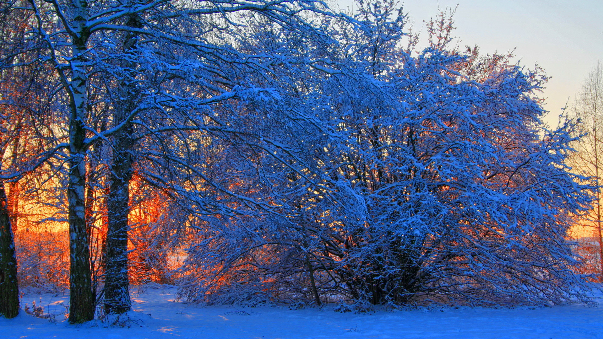 0 Winter Wallpapers Full HD Group Winter Wallpapers High Quality Download  Free