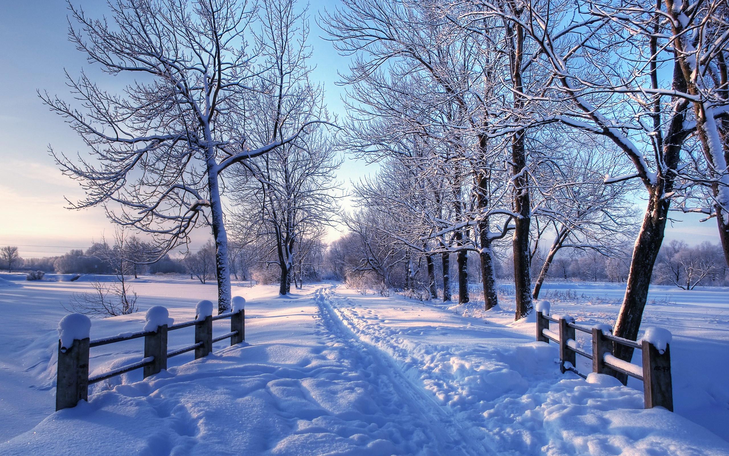 … Snow Desktop Backgrounds